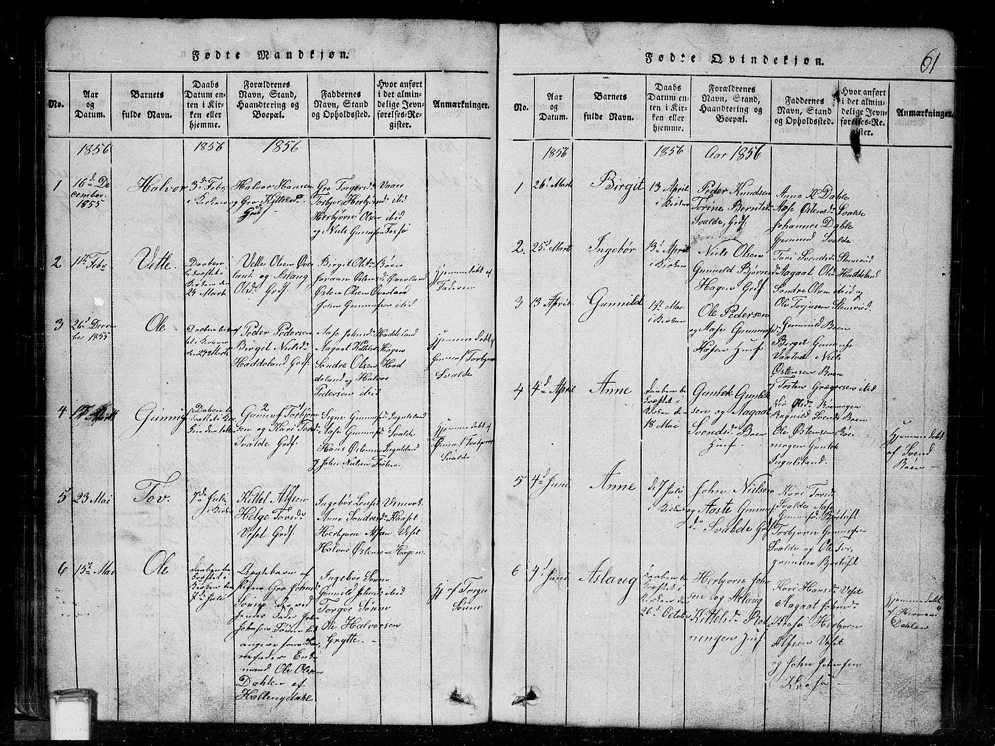 SAKO, Tinn kirkebøker, G/Gc/L0001: Klokkerbok nr. III 1, 1815-1879, s. 61