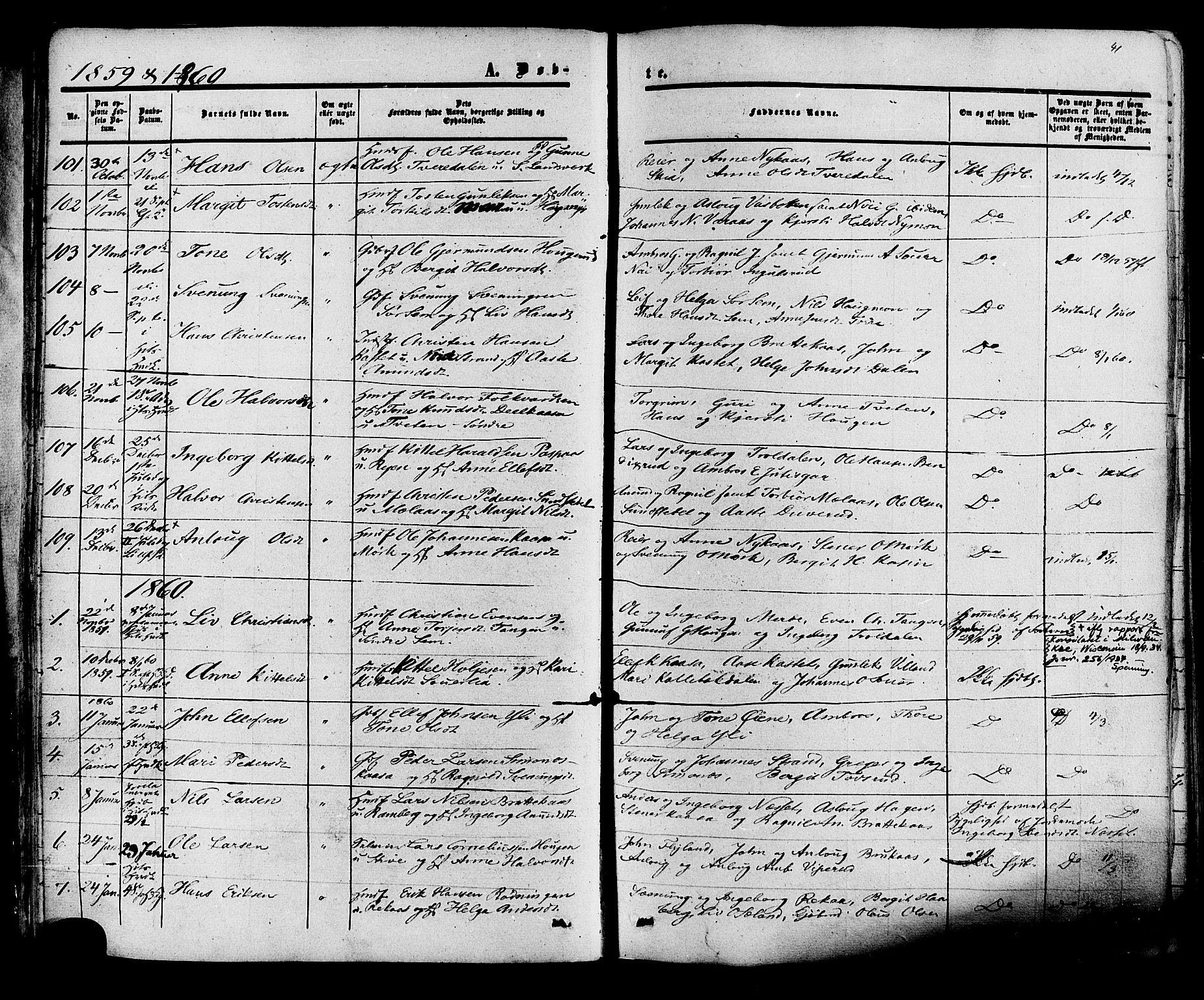 SAKO, Heddal kirkebøker, F/Fa/L0007: Ministerialbok nr. I 7, 1855-1877, s. 41