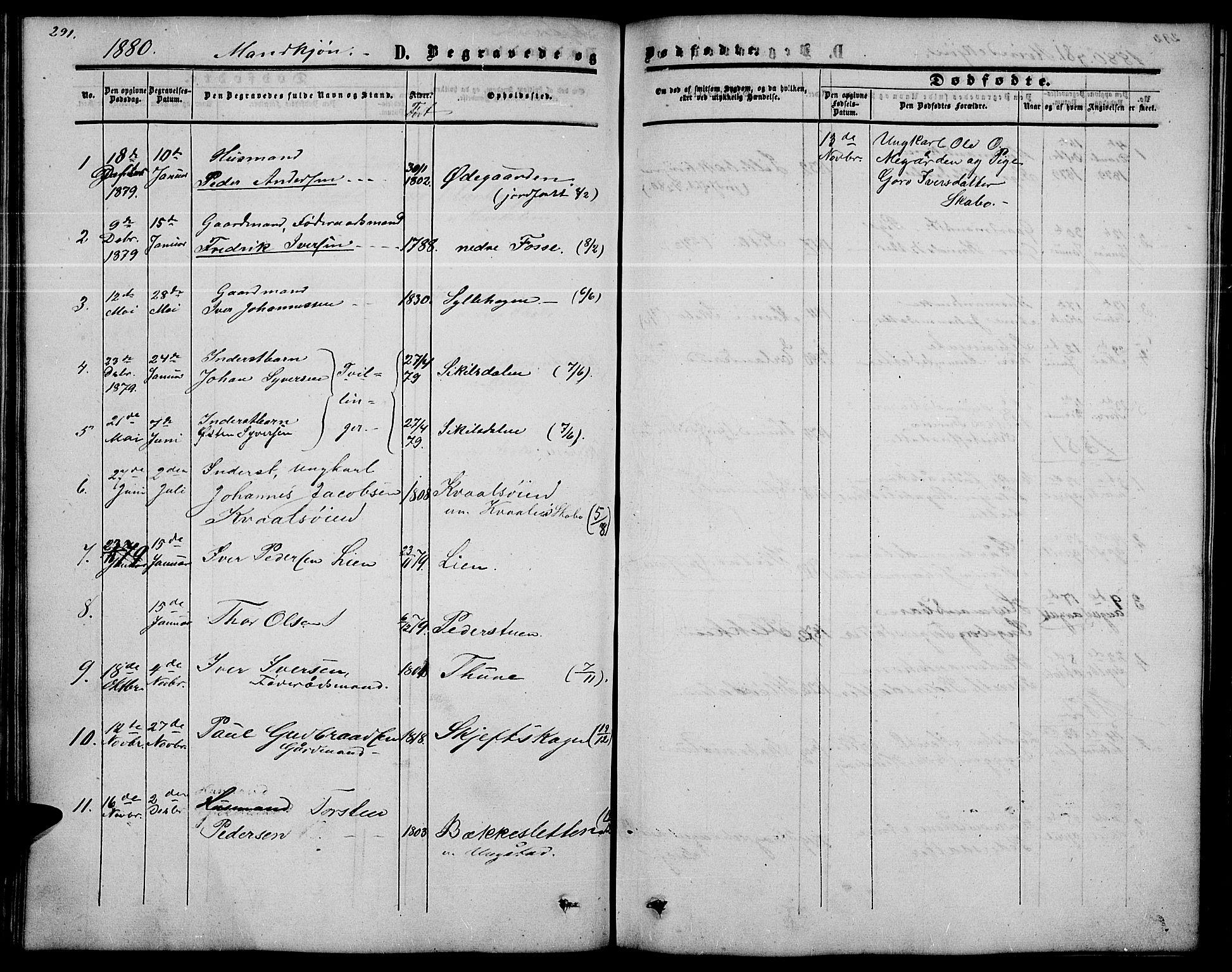 SAH, Nord-Fron prestekontor, Klokkerbok nr. 2, 1851-1883, s. 291