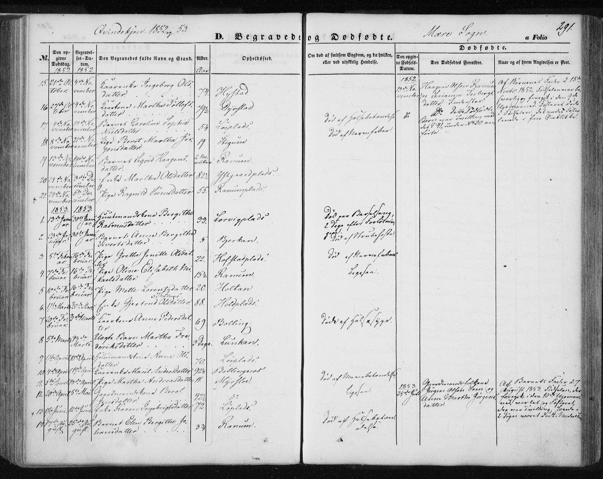 SAT, Ministerialprotokoller, klokkerbøker og fødselsregistre - Nord-Trøndelag, 735/L0342: Ministerialbok nr. 735A07 /1, 1849-1862, s. 291