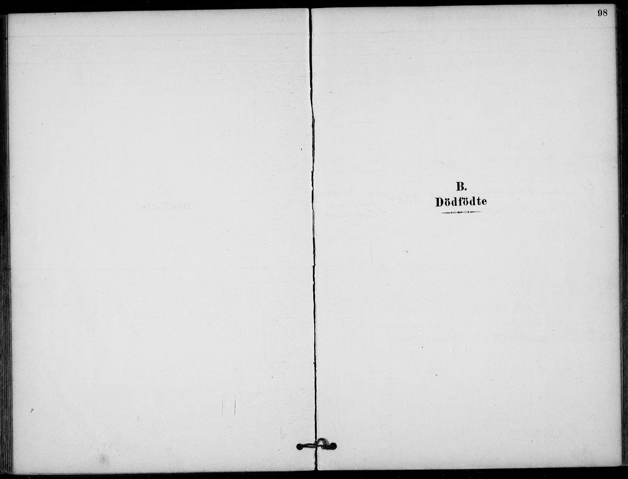 SAKO, Hjartdal kirkebøker, F/Fb/L0002: Ministerialbok nr. II 2, 1880-1932, s. 98