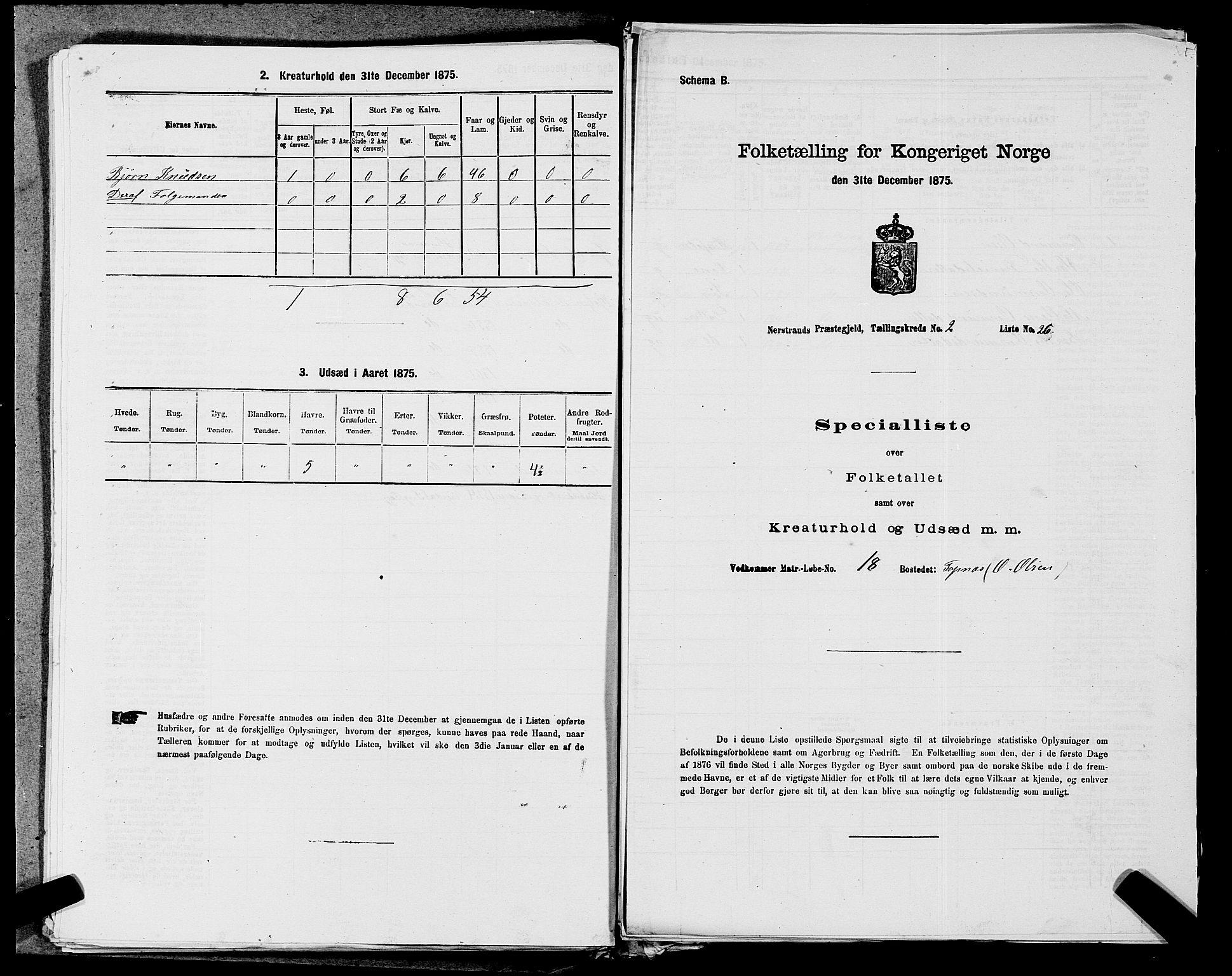SAST, Folketelling 1875 for 1139P Nedstrand prestegjeld, 1875, s. 601