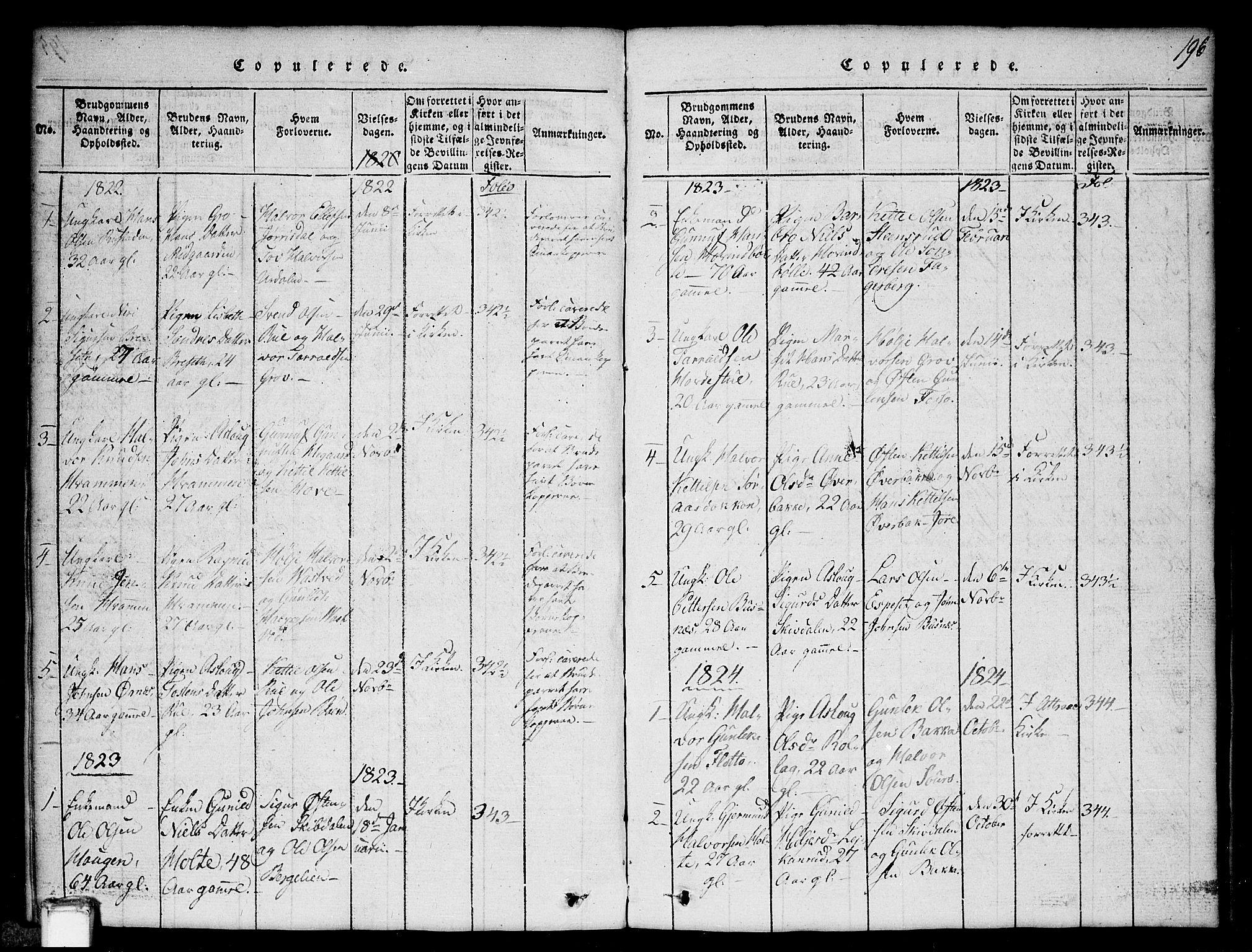 SAKO, Gransherad kirkebøker, G/Gb/L0001: Klokkerbok nr. II 1, 1815-1860, s. 196