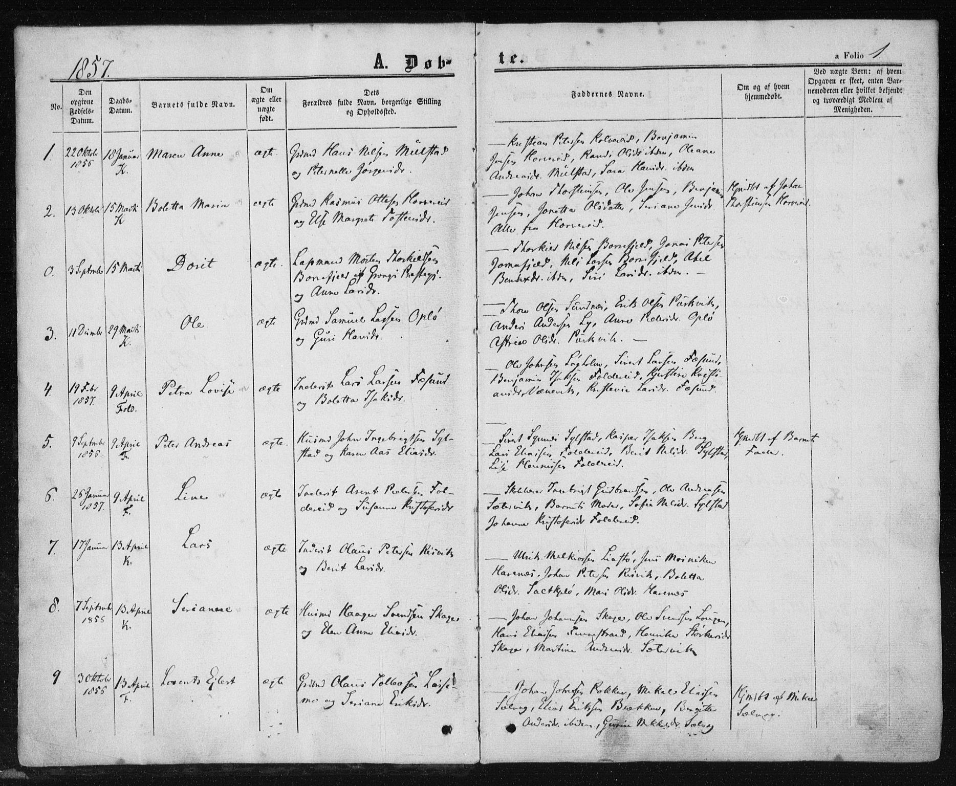 SAT, Ministerialprotokoller, klokkerbøker og fødselsregistre - Nord-Trøndelag, 780/L0641: Ministerialbok nr. 780A06, 1857-1874, s. 1
