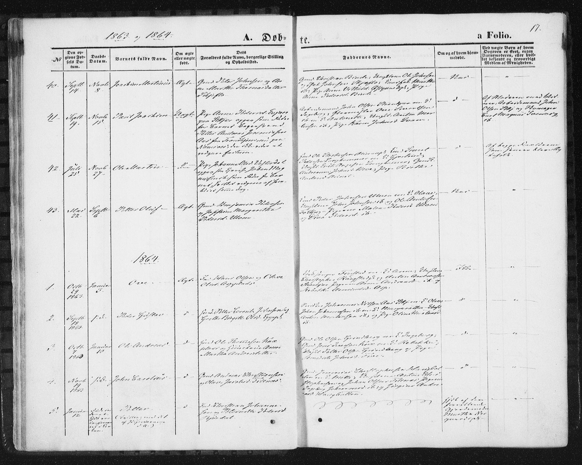 SAT, Ministerialprotokoller, klokkerbøker og fødselsregistre - Nord-Trøndelag, 746/L0447: Ministerialbok nr. 746A06, 1860-1877, s. 17