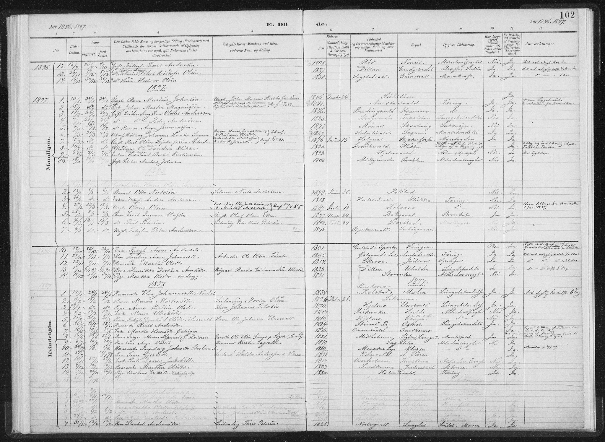 SAT, Ministerialprotokoller, klokkerbøker og fødselsregistre - Nord-Trøndelag, 724/L0263: Ministerialbok nr. 724A01, 1891-1907, s. 102