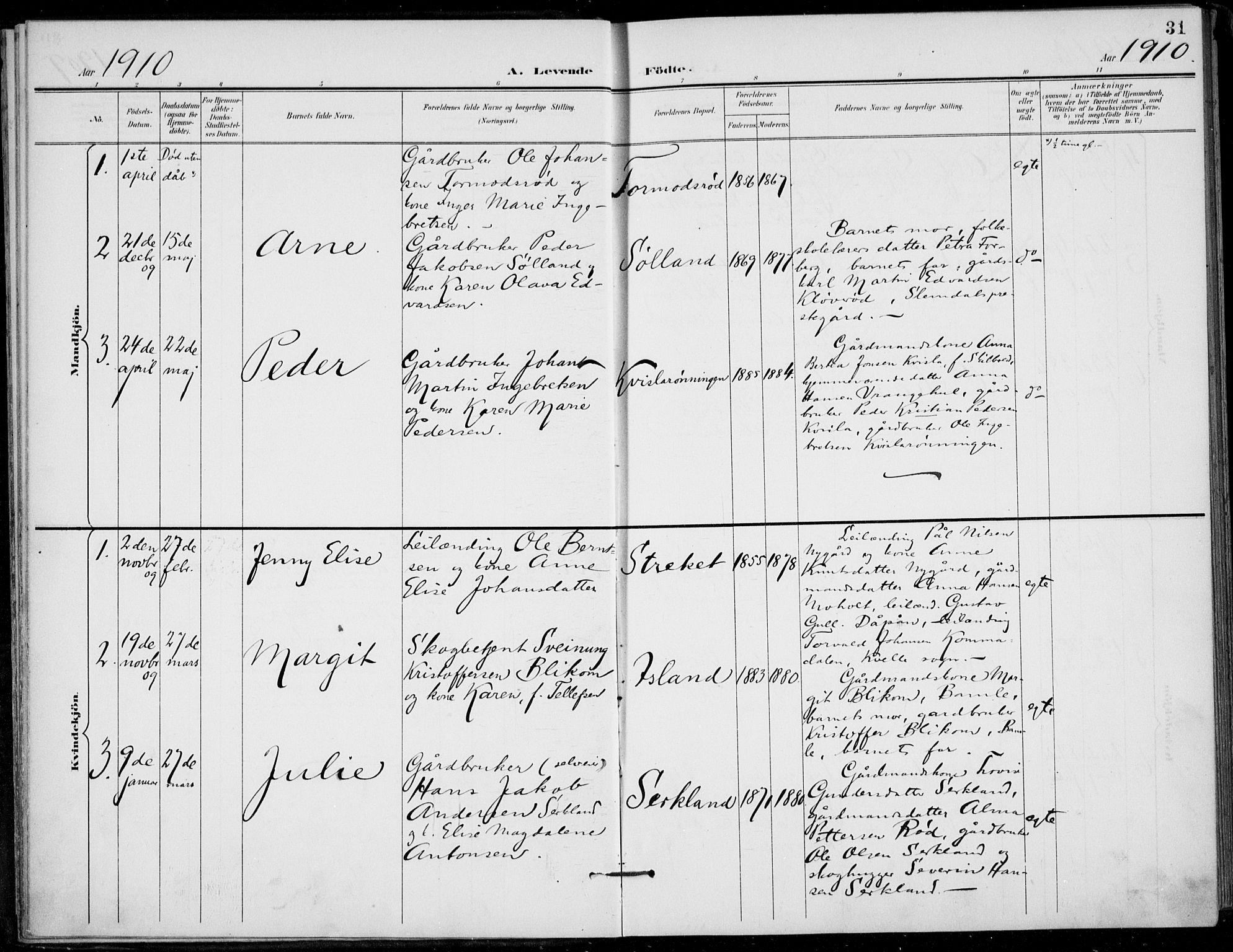 SAKO, Siljan kirkebøker, F/Fa/L0003: Ministerialbok nr. 3, 1896-1910, s. 31