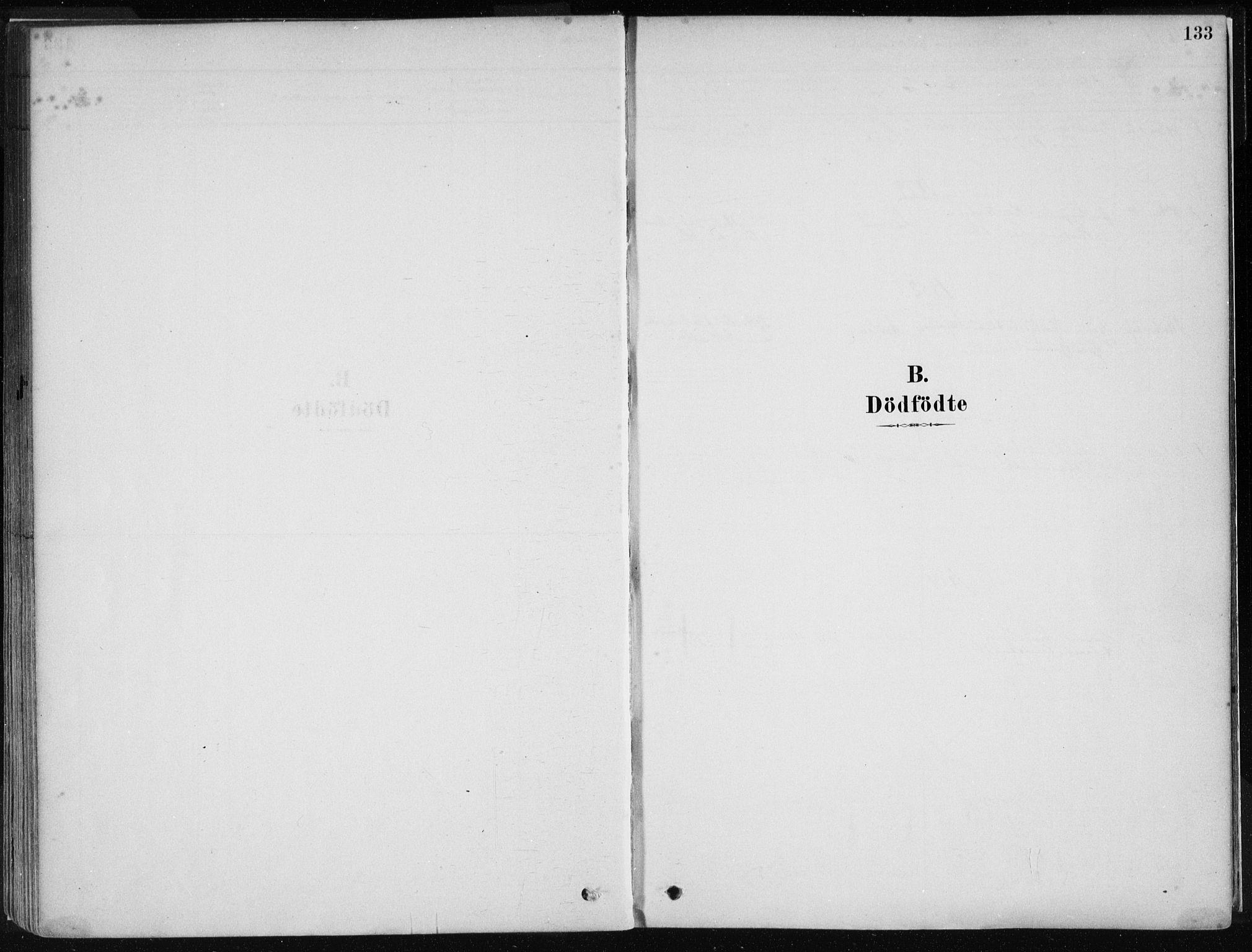 SAB, Stord sokneprestembete, H/Haa: Ministerialbok nr. B 2, 1878-1913, s. 133