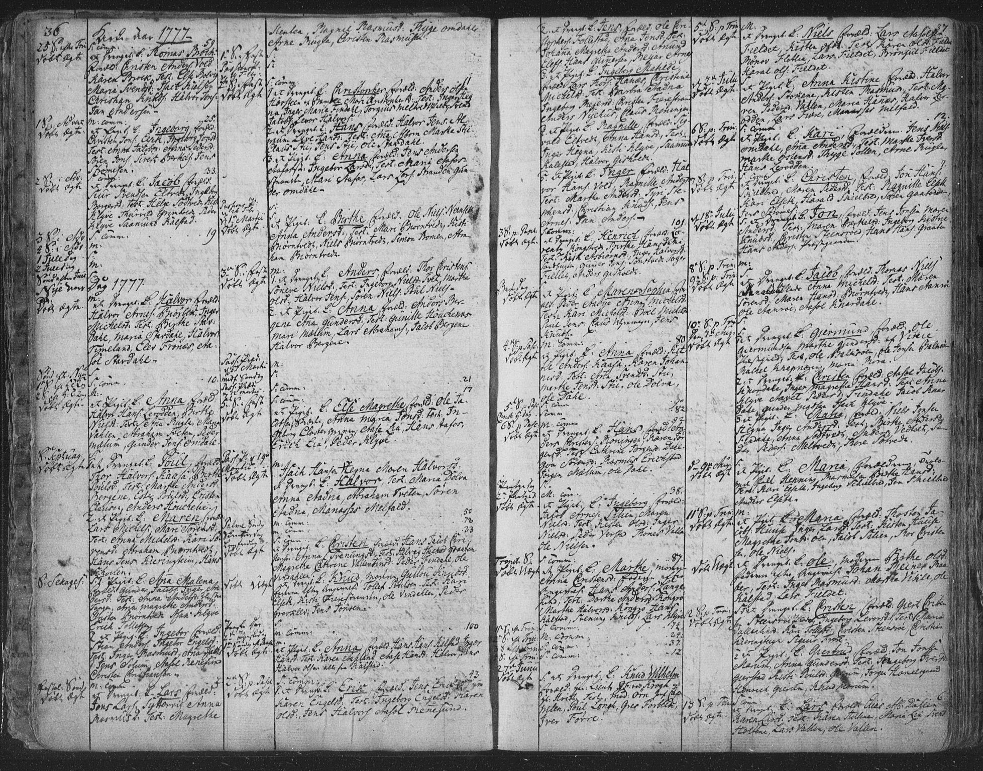 SAKO, Solum kirkebøker, F/Fa/L0003: Ministerialbok nr. I 3, 1761-1814, s. 36-37
