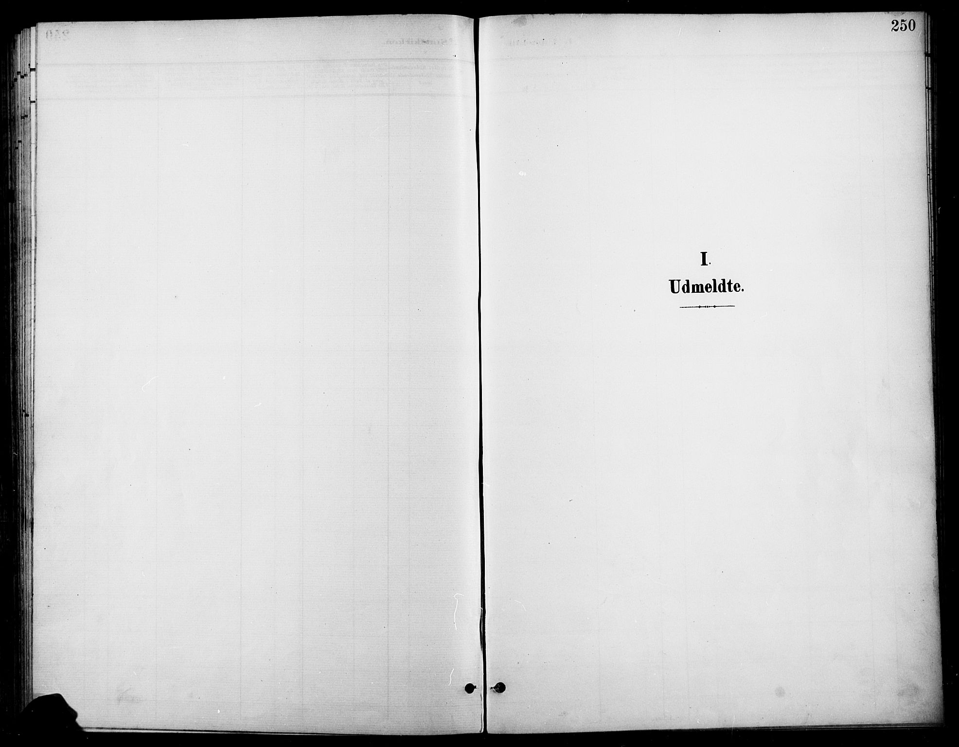SAH, Gran prestekontor, Ministerialbok nr. 19, 1898-1907, s. 250