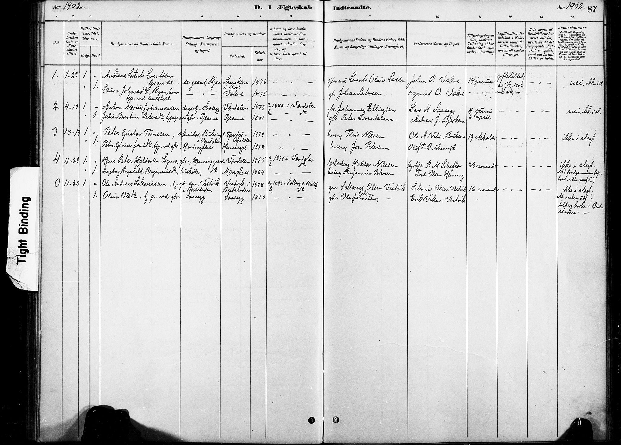 SAT, Ministerialprotokoller, klokkerbøker og fødselsregistre - Nord-Trøndelag, 738/L0364: Ministerialbok nr. 738A01, 1884-1902, s. 87