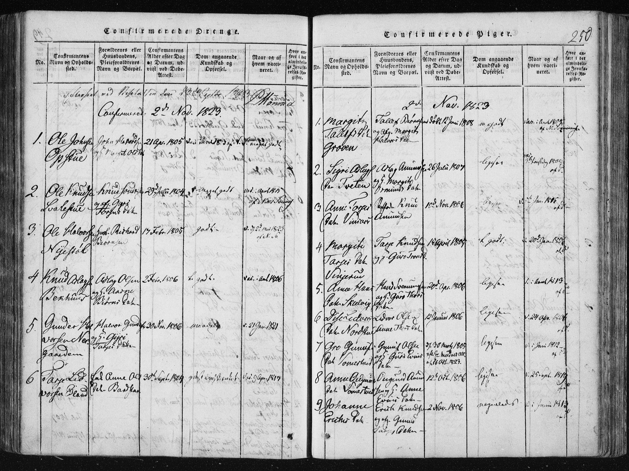 SAKO, Vinje kirkebøker, F/Fa/L0003: Ministerialbok nr. I 3, 1814-1843, s. 250