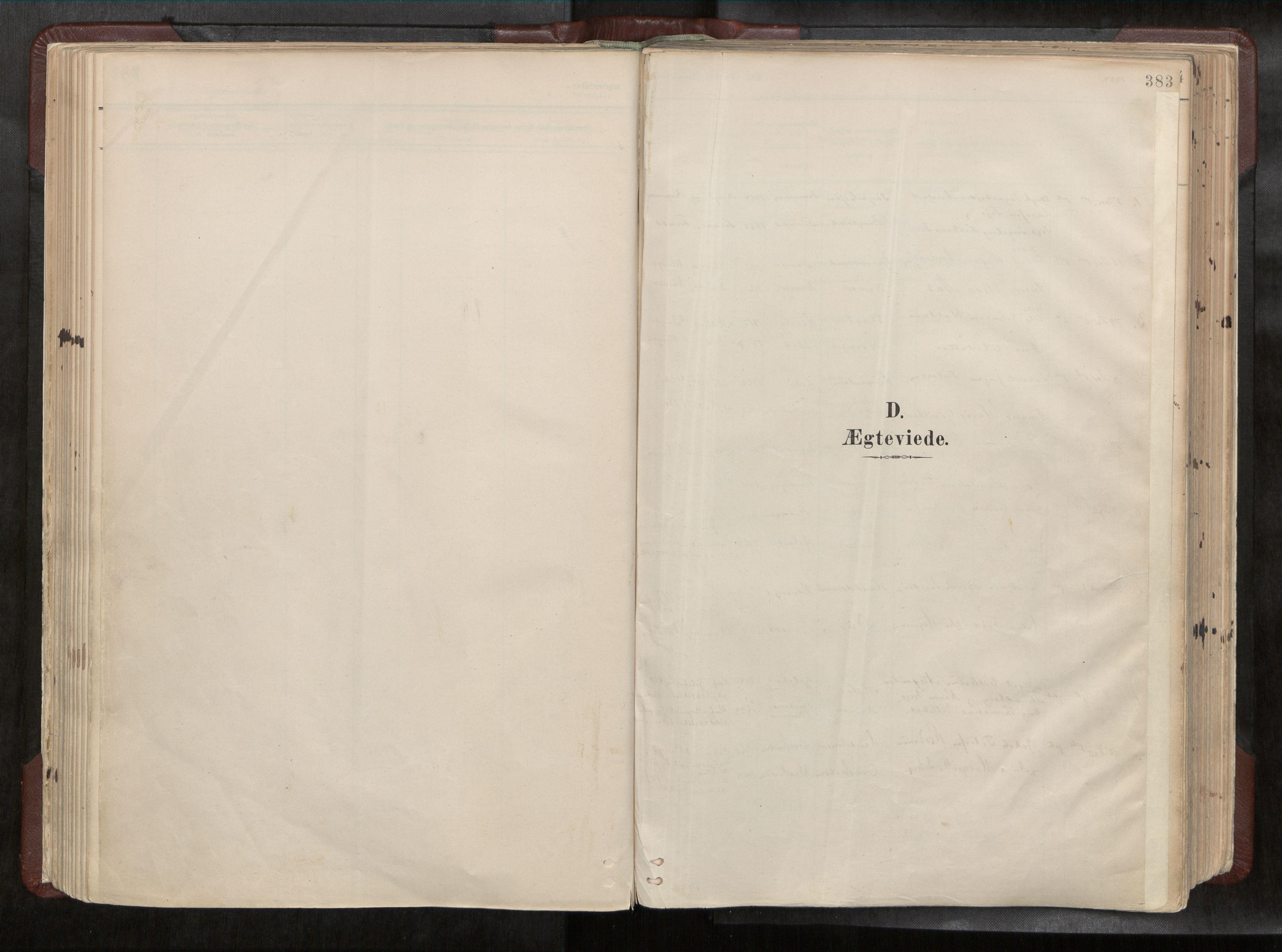 SAT, Ministerialprotokoller, klokkerbøker og fødselsregistre - Nord-Trøndelag, 768/L0579a: Ministerialbok nr. 768A14, 1887-1931, s. 383