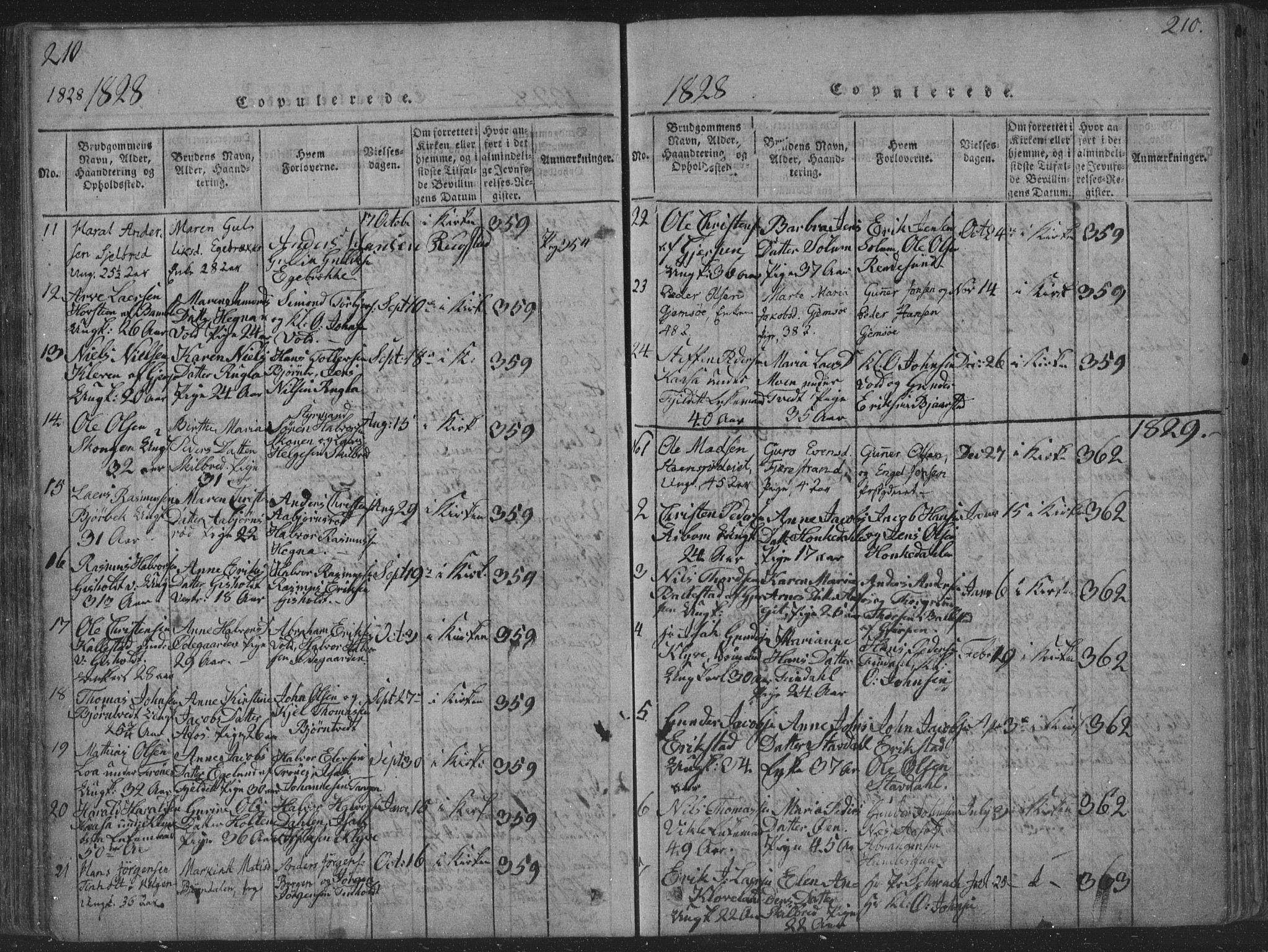 SAKO, Solum kirkebøker, F/Fa/L0004: Ministerialbok nr. I 4, 1814-1833, s. 210