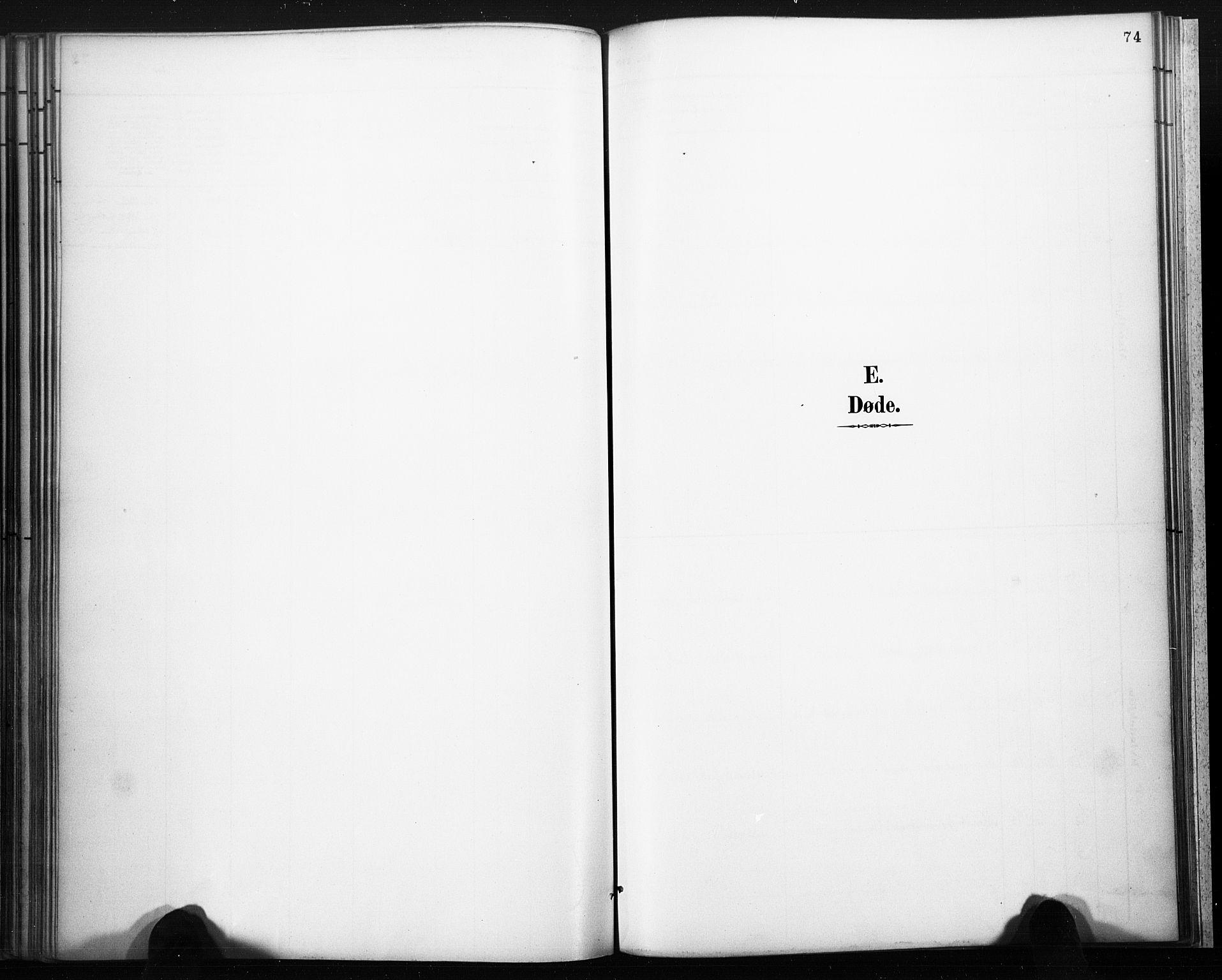 SAKO, Lårdal kirkebøker, F/Fb/L0002: Ministerialbok nr. II 2, 1887-1918, s. 74