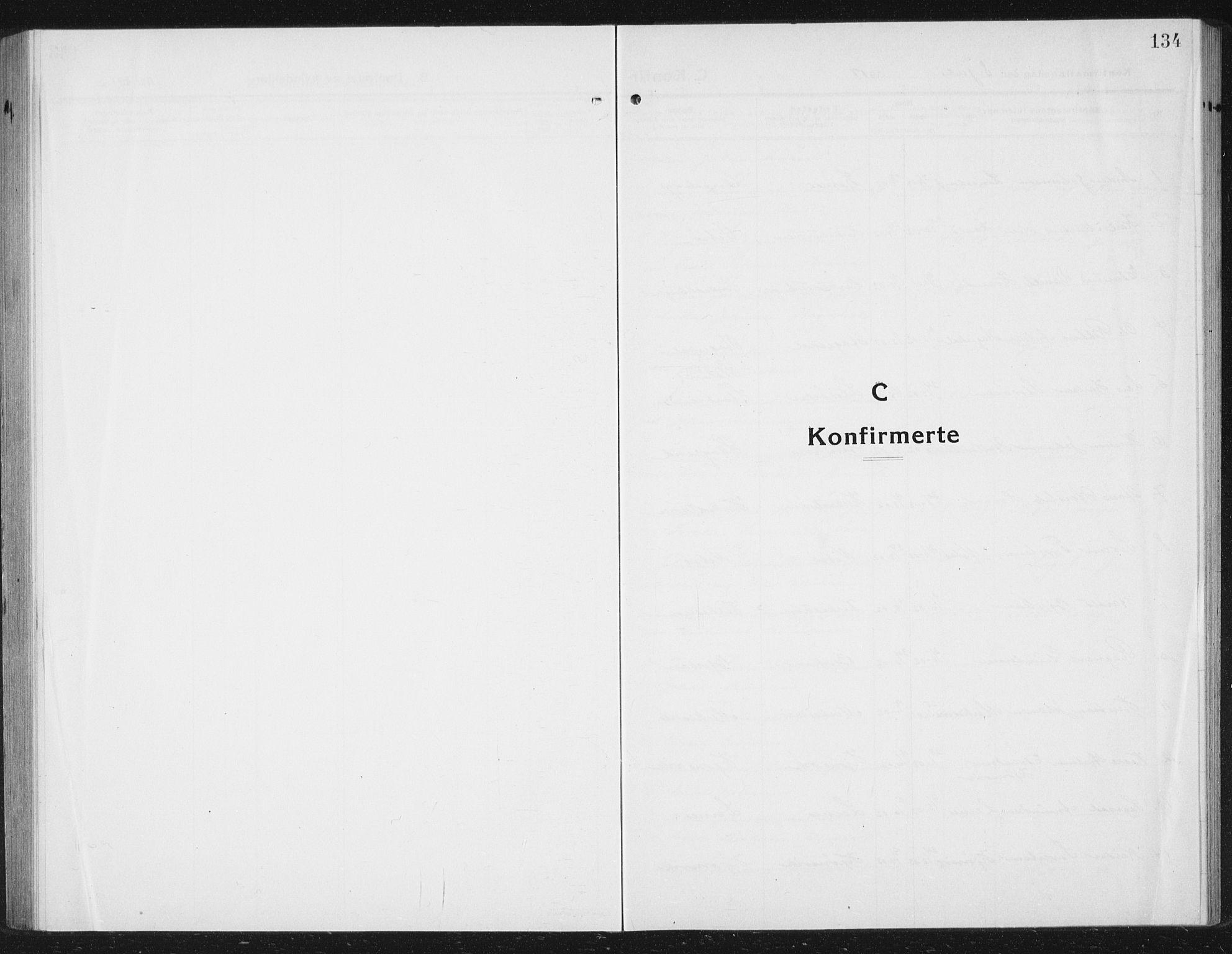 SAT, Ministerialprotokoller, klokkerbøker og fødselsregistre - Sør-Trøndelag, 630/L0506: Klokkerbok nr. 630C04, 1914-1933, s. 134