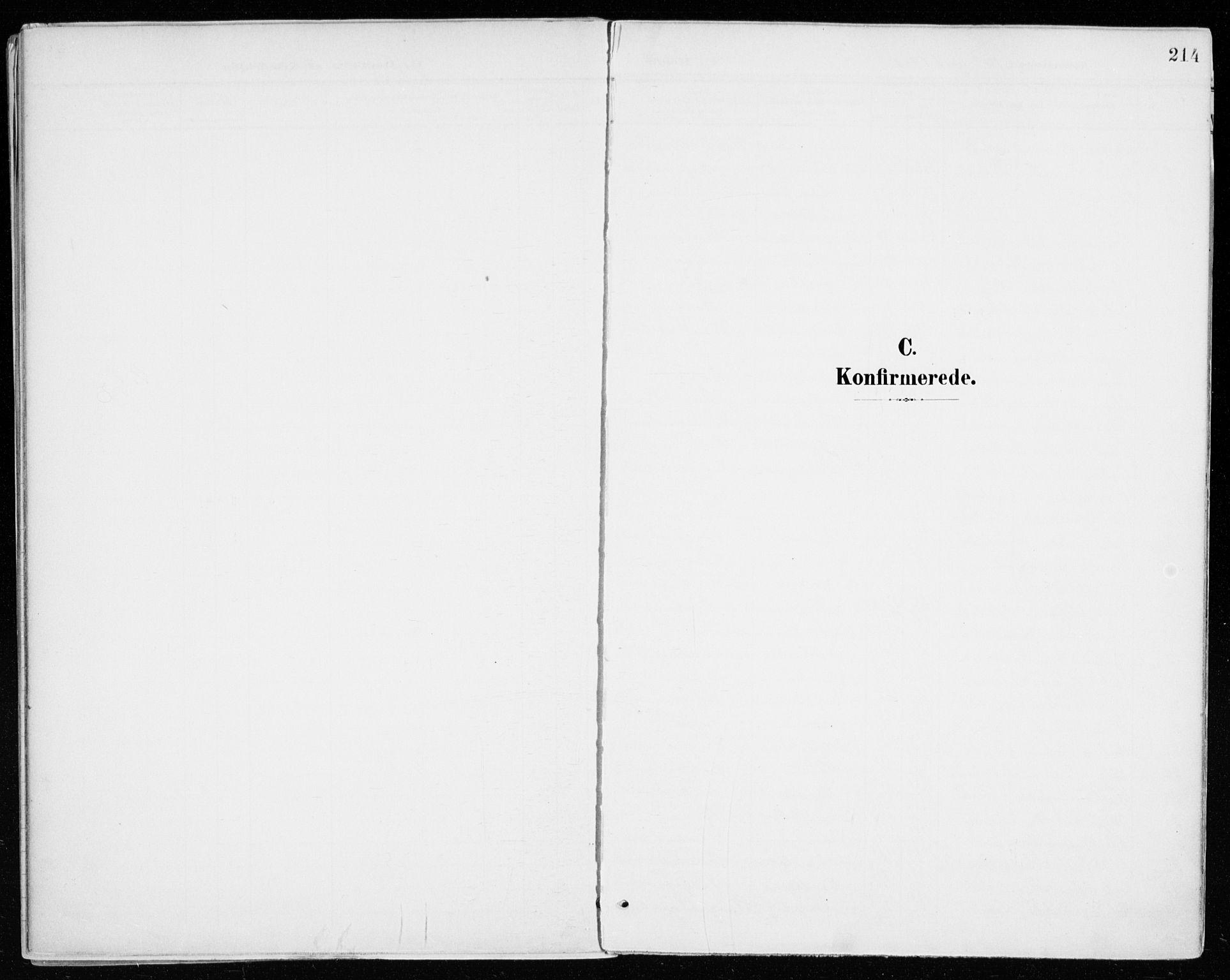 SAH, Vang prestekontor, Hedmark, H/Ha/Haa/L0021: Ministerialbok nr. 21, 1902-1917, s. 214