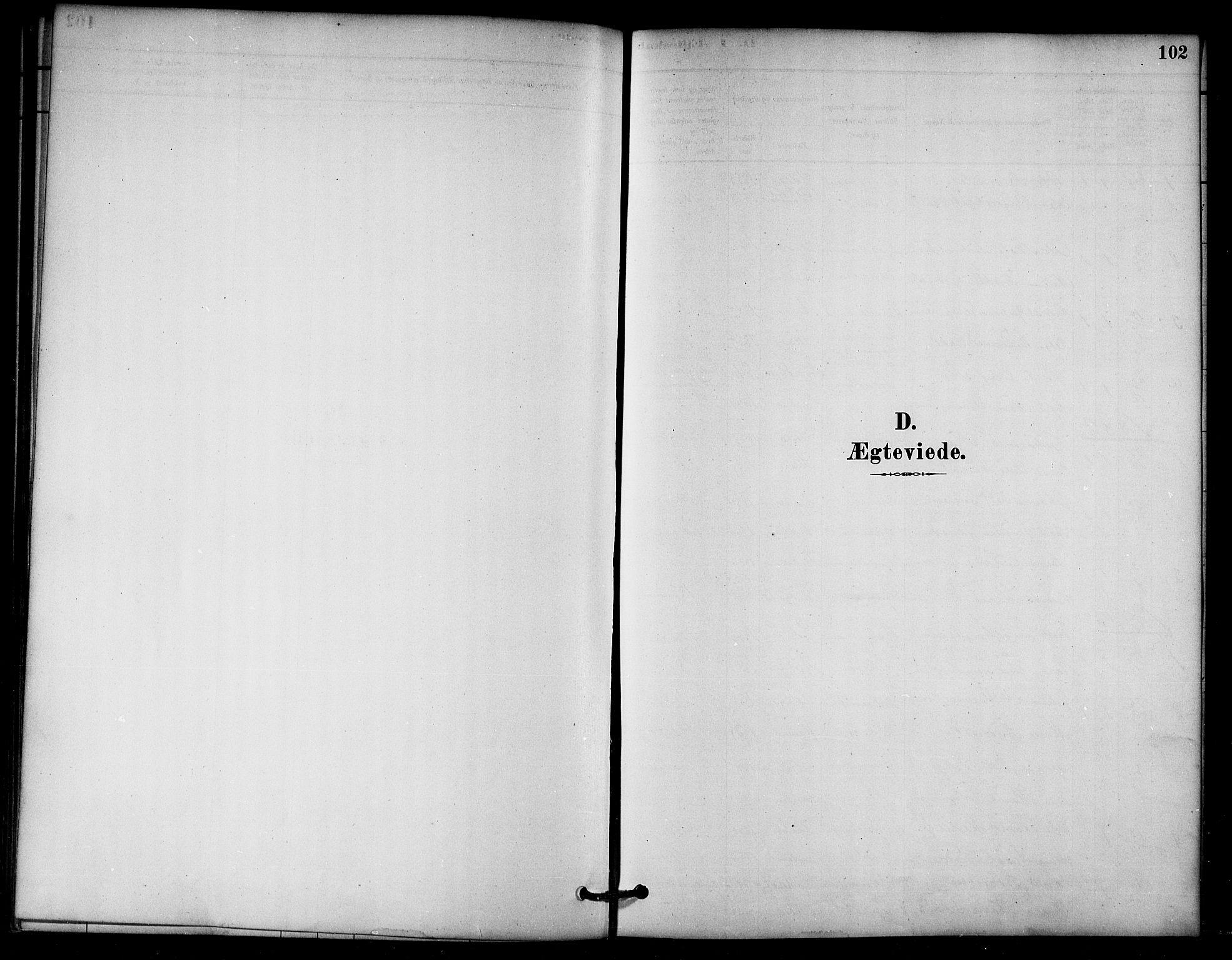 SAT, Ministerialprotokoller, klokkerbøker og fødselsregistre - Nord-Trøndelag, 766/L0563: Ministerialbok nr. 767A01, 1881-1899, s. 102