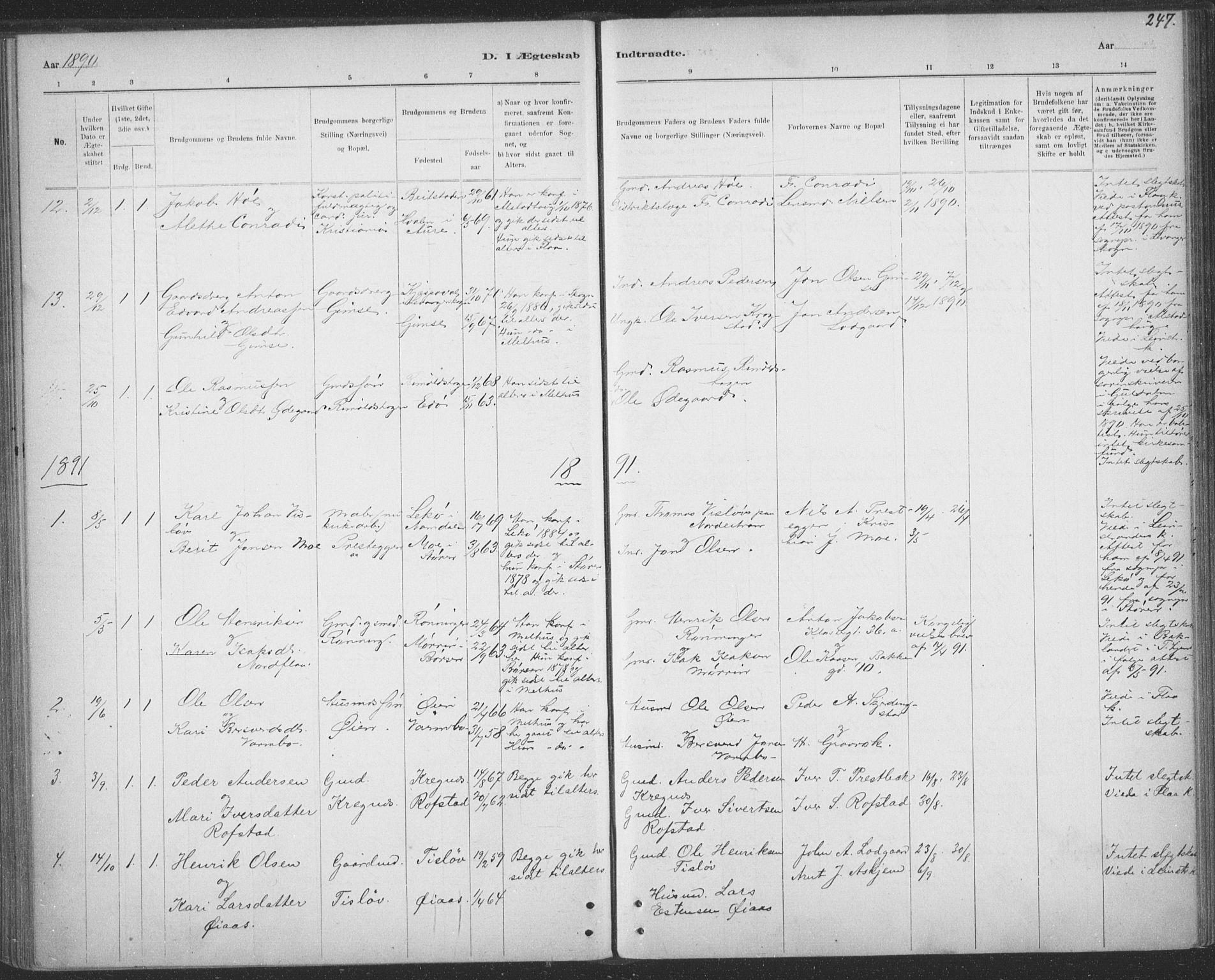 SAT, Ministerialprotokoller, klokkerbøker og fødselsregistre - Sør-Trøndelag, 691/L1085: Ministerialbok nr. 691A17, 1887-1908, s. 247