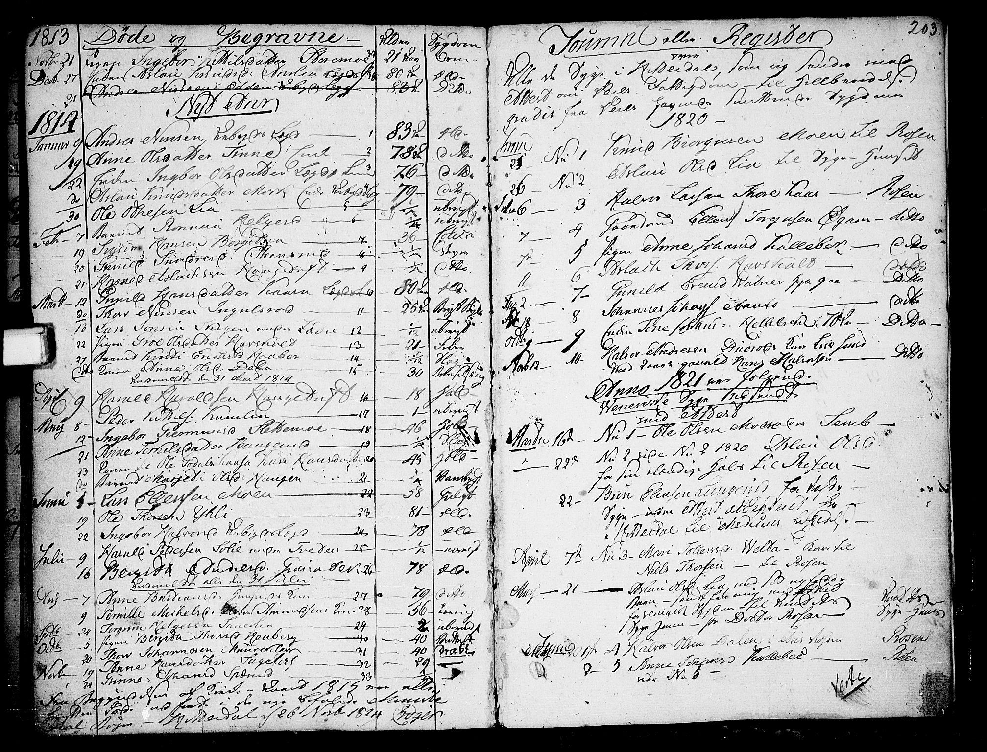SAKO, Heddal kirkebøker, F/Fa/L0004: Ministerialbok nr. I 4, 1784-1814, s. 203