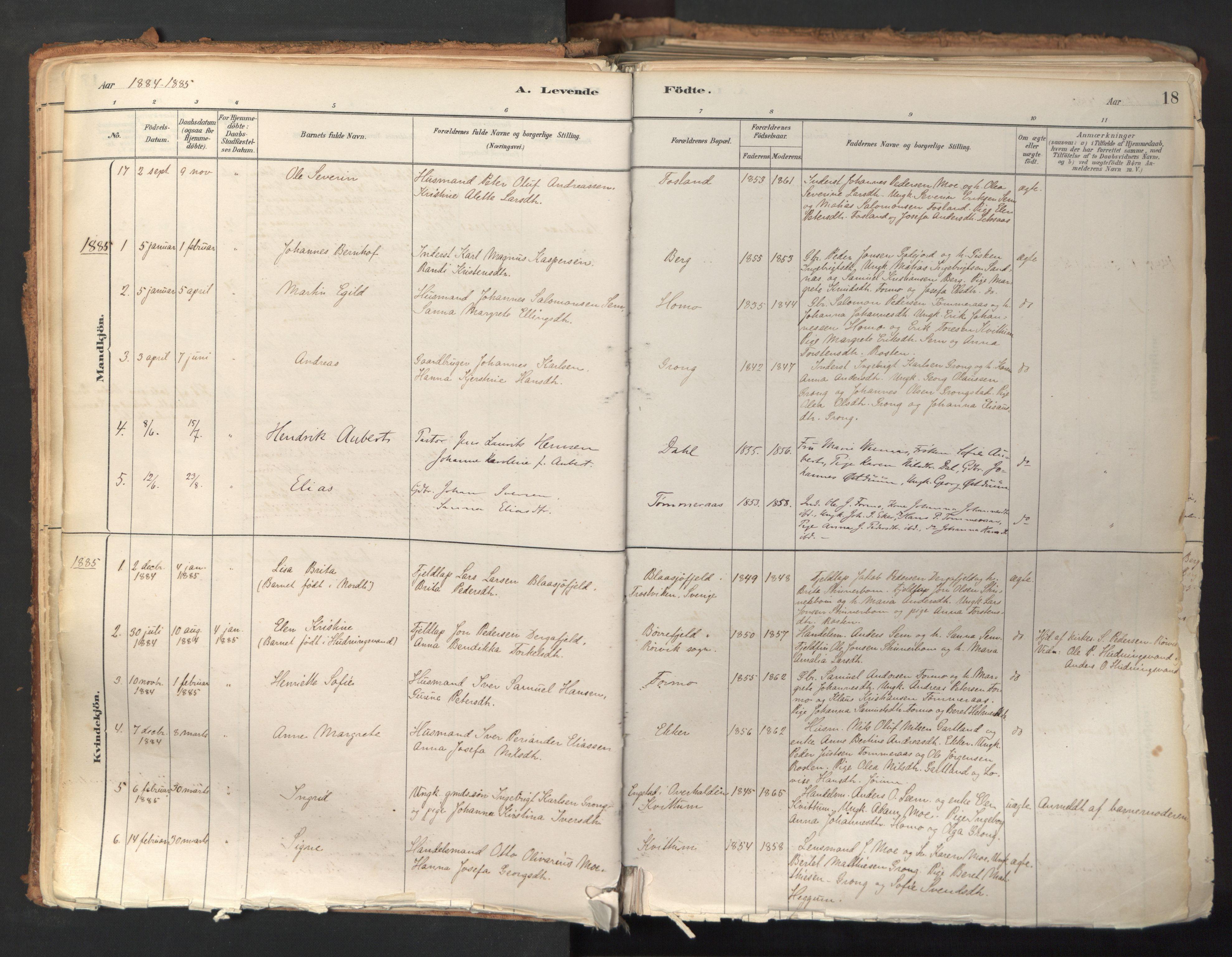 SAT, Ministerialprotokoller, klokkerbøker og fødselsregistre - Nord-Trøndelag, 758/L0519: Ministerialbok nr. 758A04, 1880-1926, s. 18