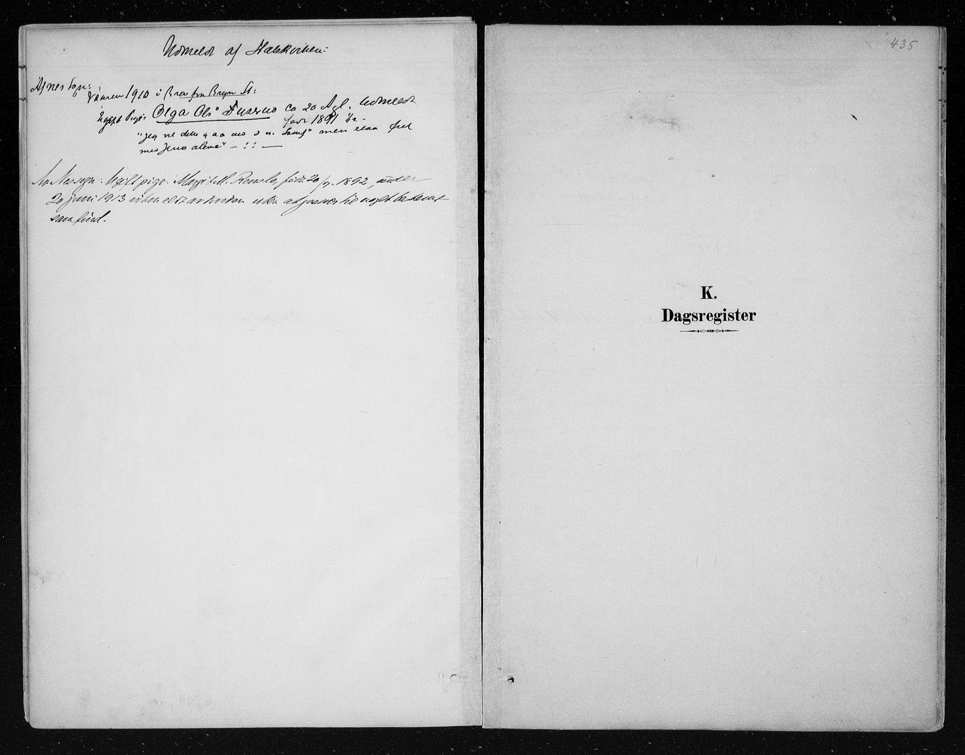 SAKO, Nes kirkebøker, F/Fa/L0011: Ministerialbok nr. 11, 1881-1912, s. 435