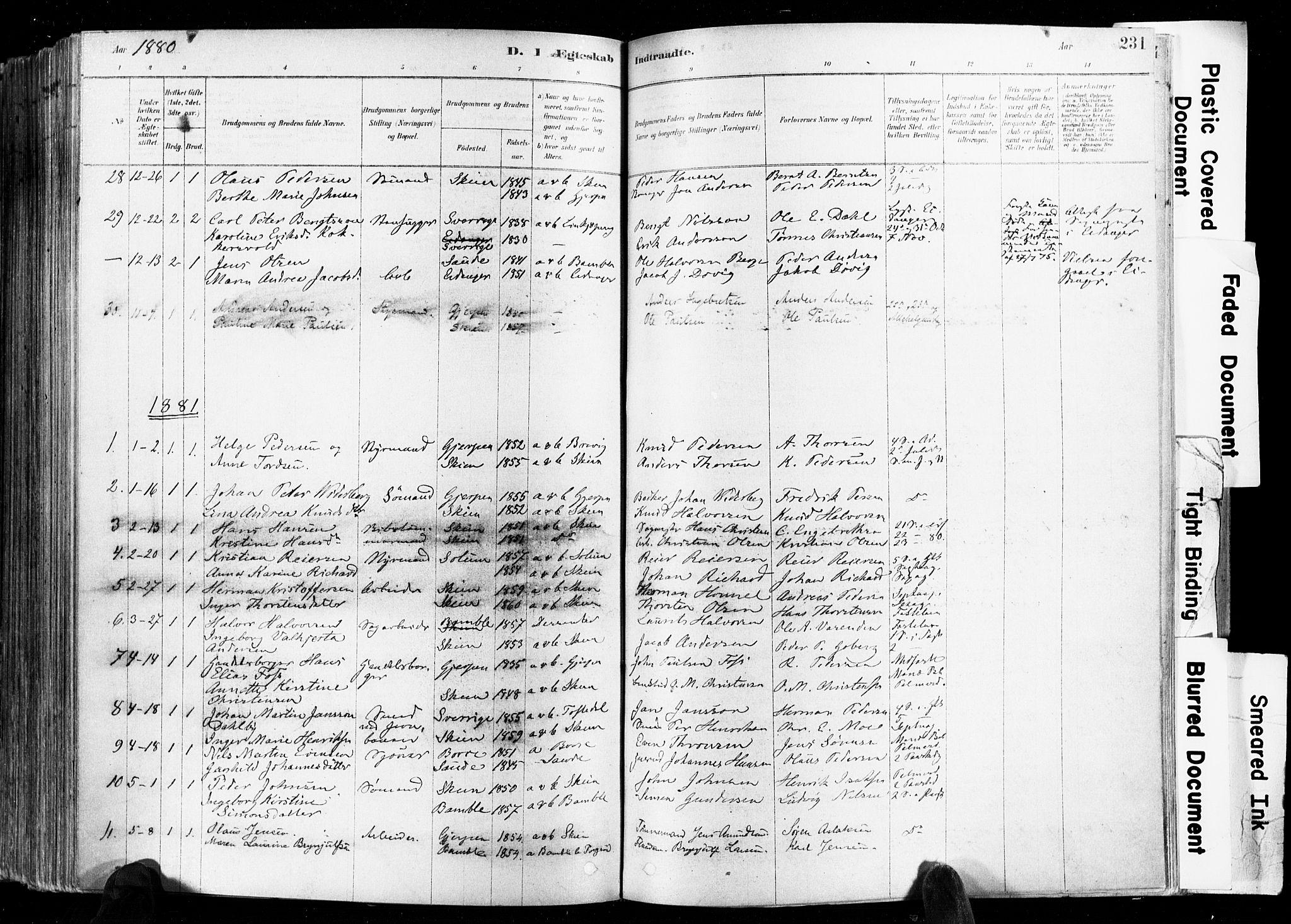 SAKO, Skien kirkebøker, F/Fa/L0009: Ministerialbok nr. 9, 1878-1890, s. 231