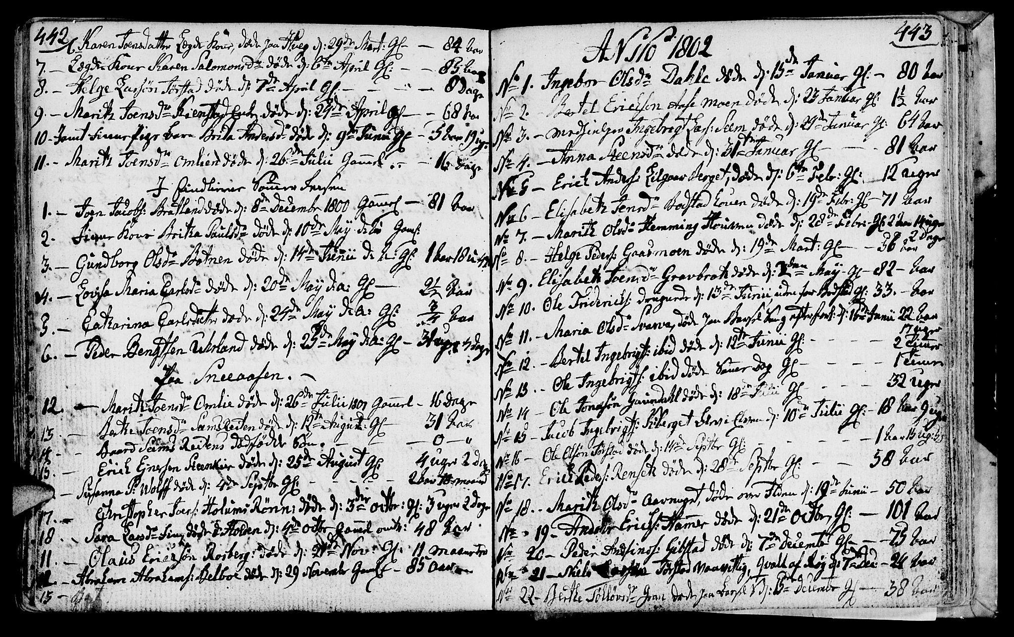 SAT, Ministerialprotokoller, klokkerbøker og fødselsregistre - Nord-Trøndelag, 749/L0468: Ministerialbok nr. 749A02, 1787-1817, s. 442-443