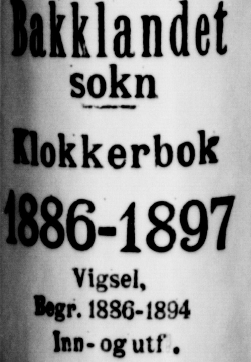 SAT, Ministerialprotokoller, klokkerbøker og fødselsregistre - Sør-Trøndelag, 604/L0223: Klokkerbok nr. 604C06, 1886-1897
