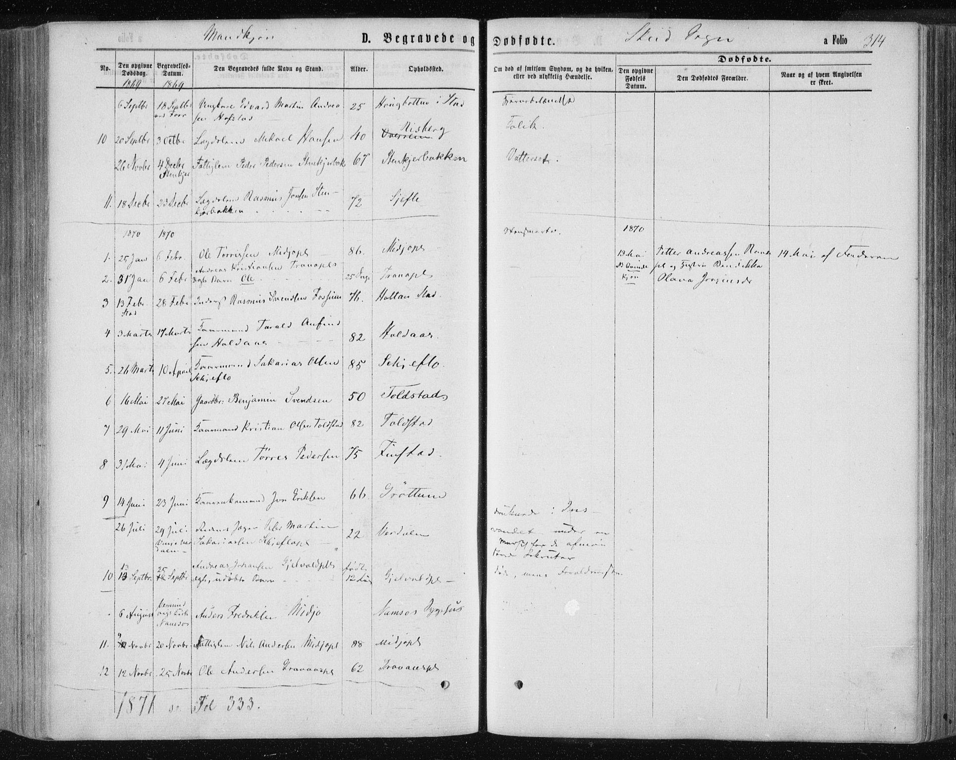 SAT, Ministerialprotokoller, klokkerbøker og fødselsregistre - Nord-Trøndelag, 735/L0345: Ministerialbok nr. 735A08 /2, 1863-1872, s. 314