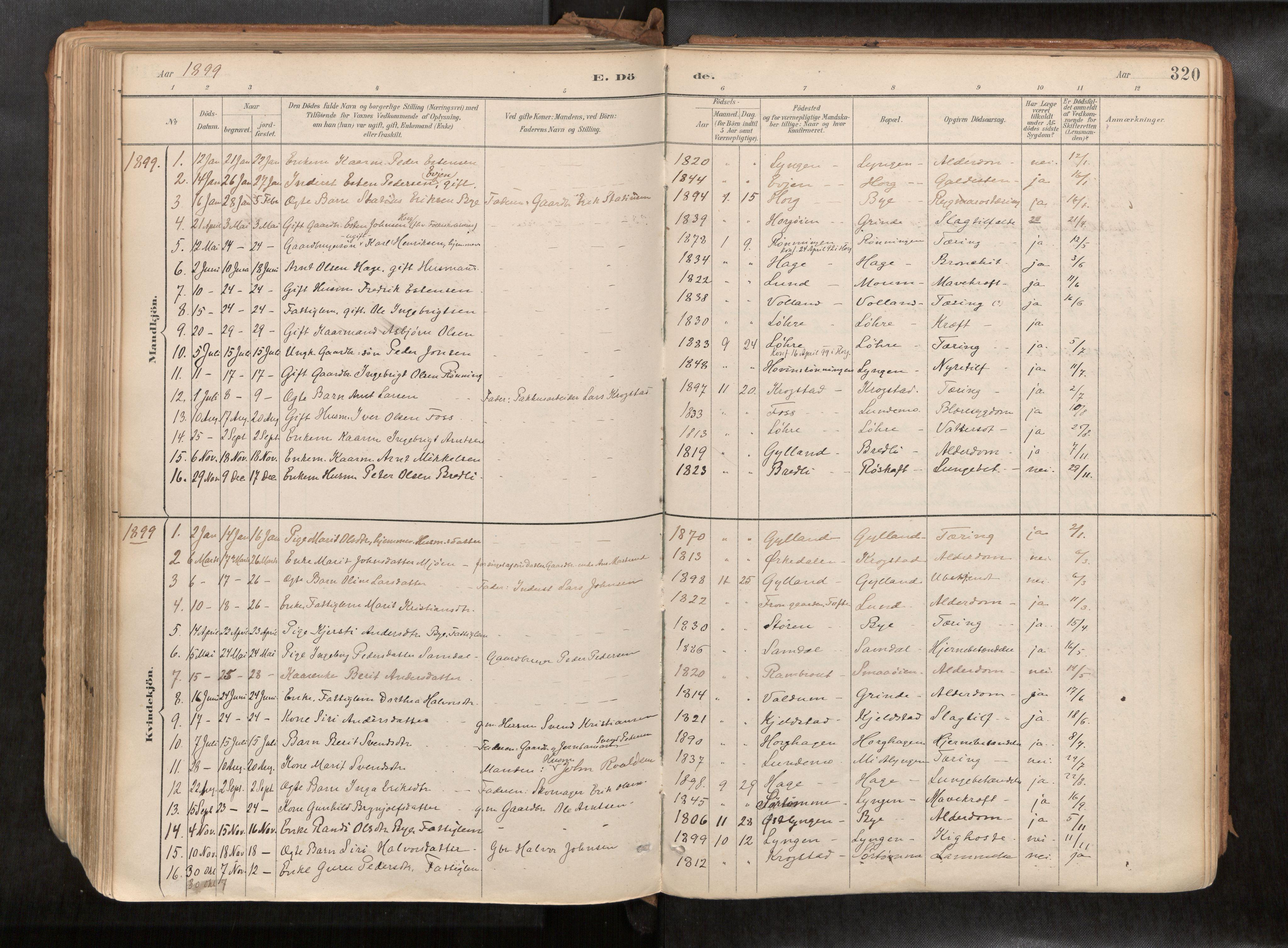 SAT, Ministerialprotokoller, klokkerbøker og fødselsregistre - Sør-Trøndelag, 692/L1105b: Ministerialbok nr. 692A06, 1891-1934, s. 320