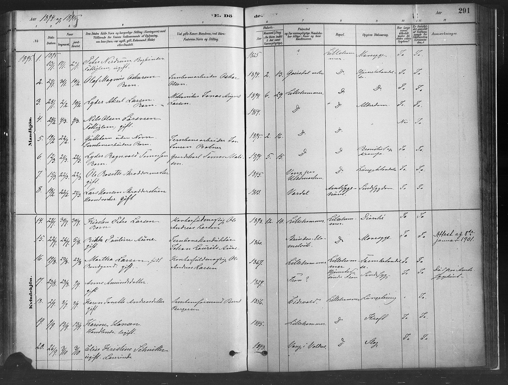 SAH, Fåberg prestekontor, Ministerialbok nr. 10, 1879-1900, s. 291