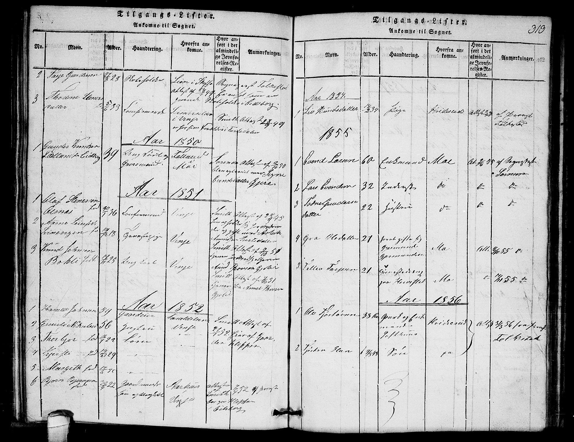 SAKO, Lårdal kirkebøker, G/Gb/L0001: Klokkerbok nr. II 1, 1815-1865, s. 313