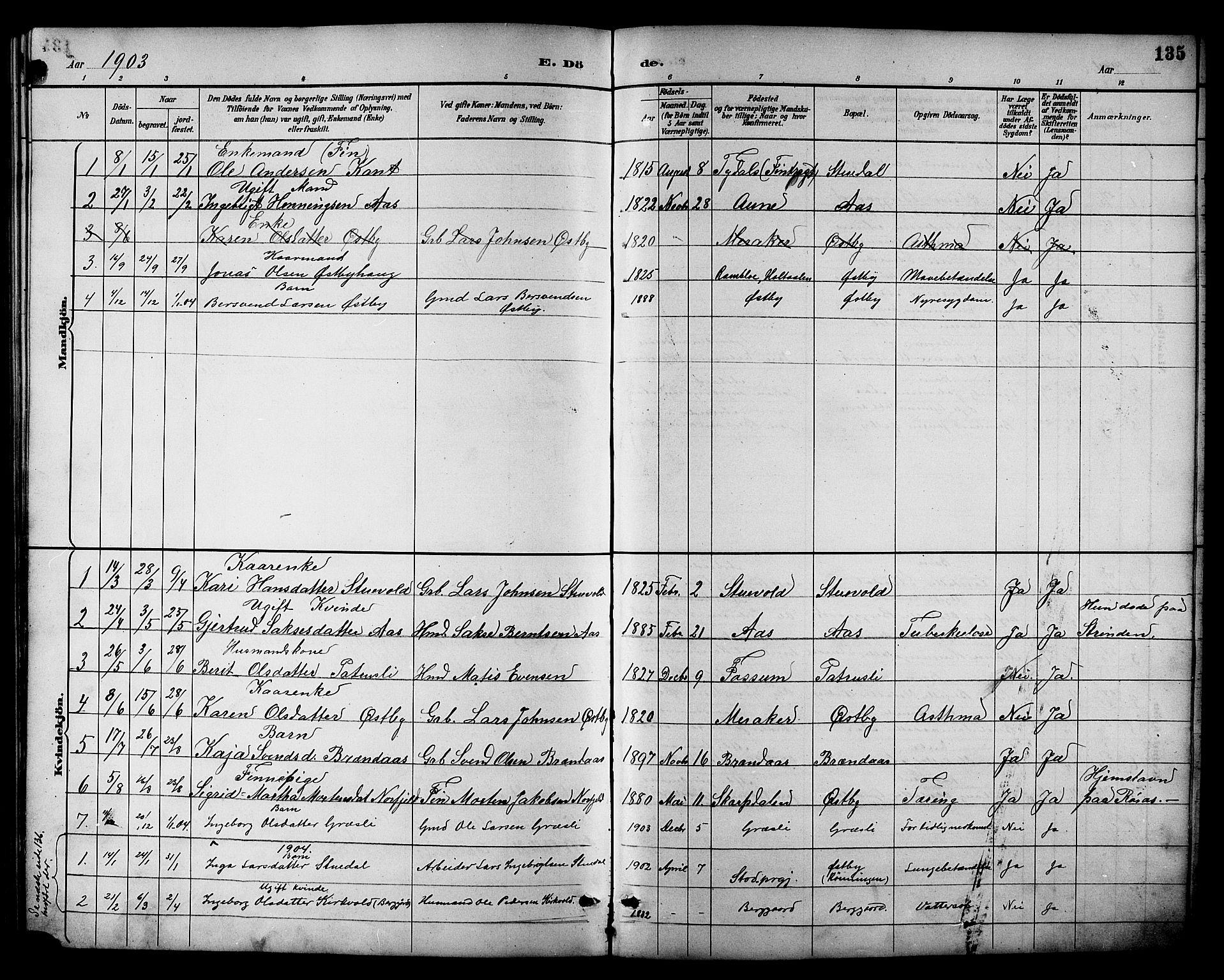 SAT, Ministerialprotokoller, klokkerbøker og fødselsregistre - Sør-Trøndelag, 698/L1167: Klokkerbok nr. 698C04, 1888-1907, s. 135