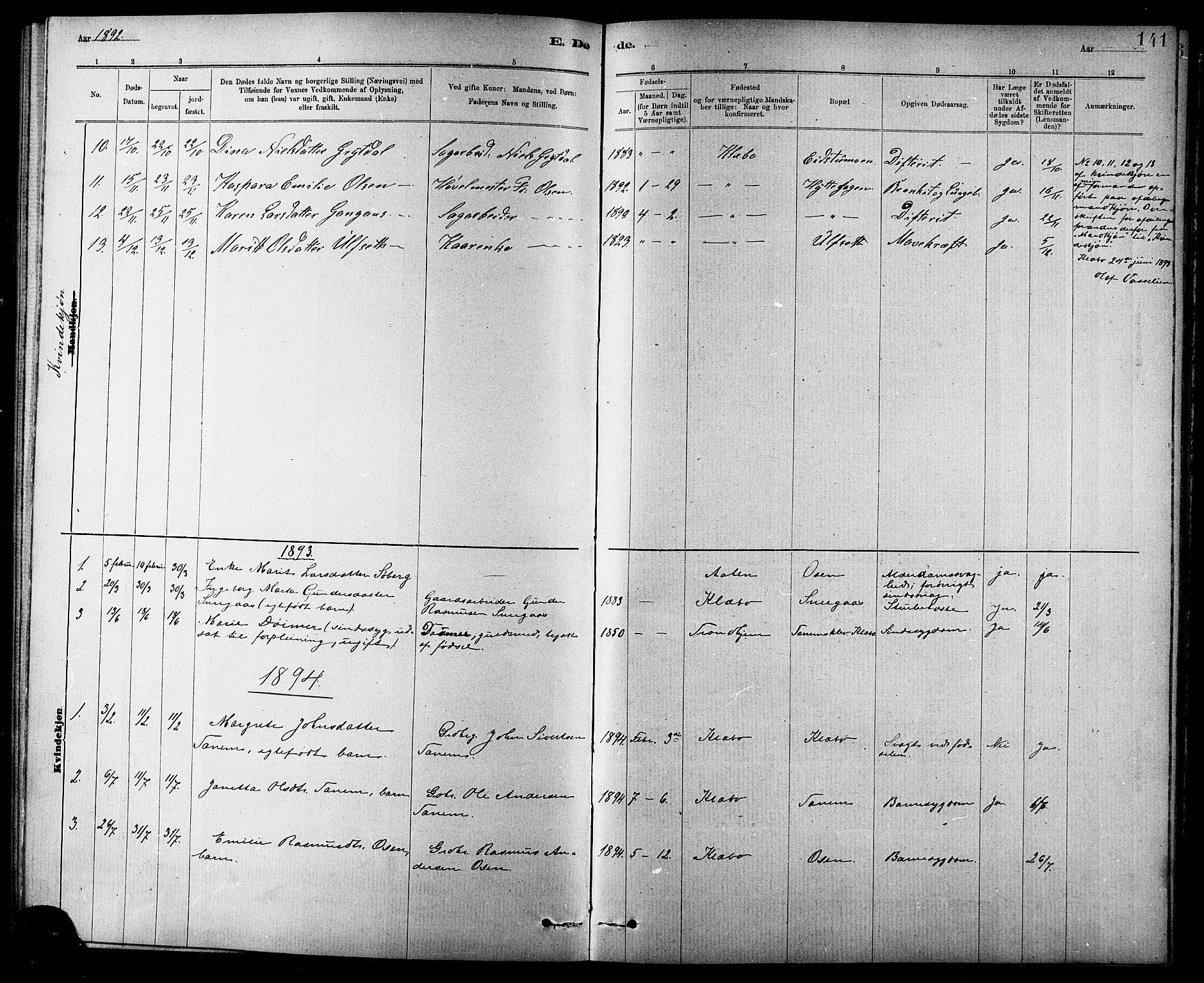 SAT, Ministerialprotokoller, klokkerbøker og fødselsregistre - Sør-Trøndelag, 618/L0452: Klokkerbok nr. 618C03, 1884-1906, s. 141