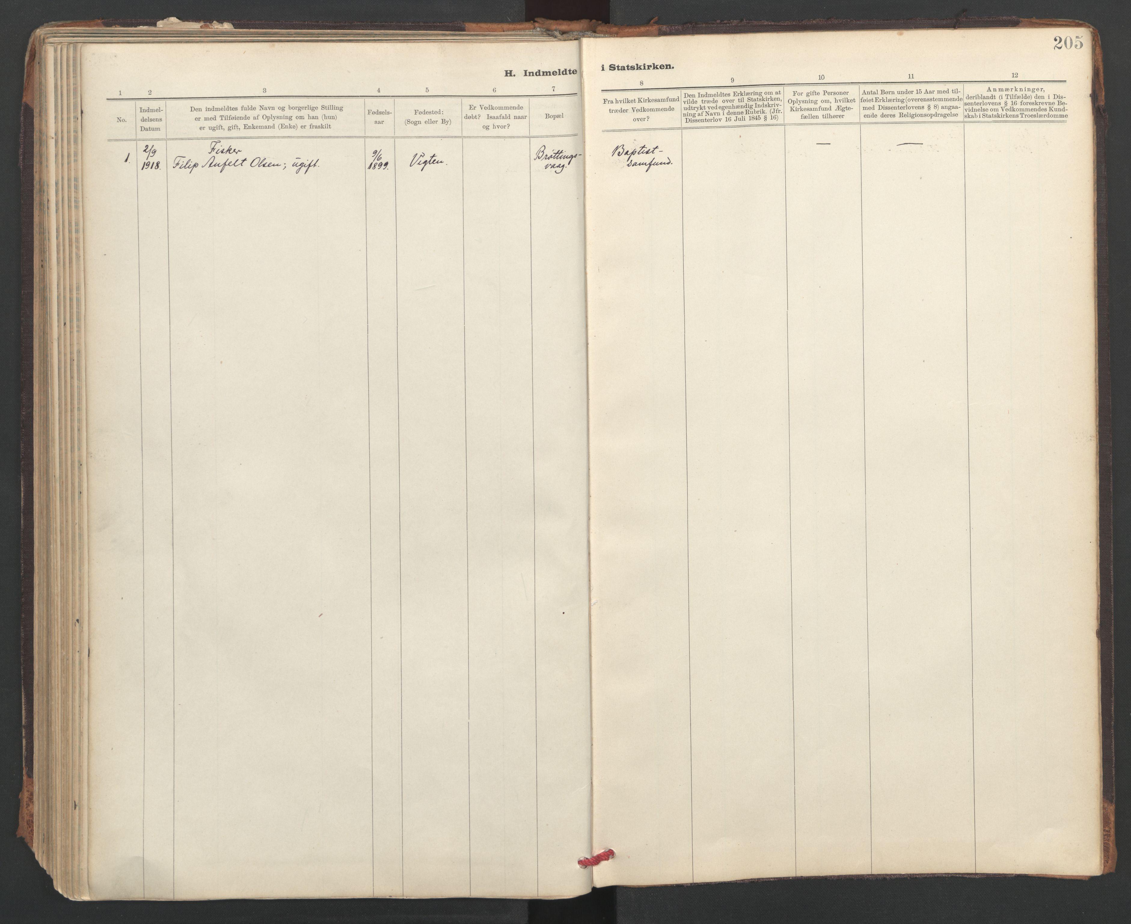 SAT, Ministerialprotokoller, klokkerbøker og fødselsregistre - Sør-Trøndelag, 637/L0559: Ministerialbok nr. 637A02, 1899-1923, s. 205