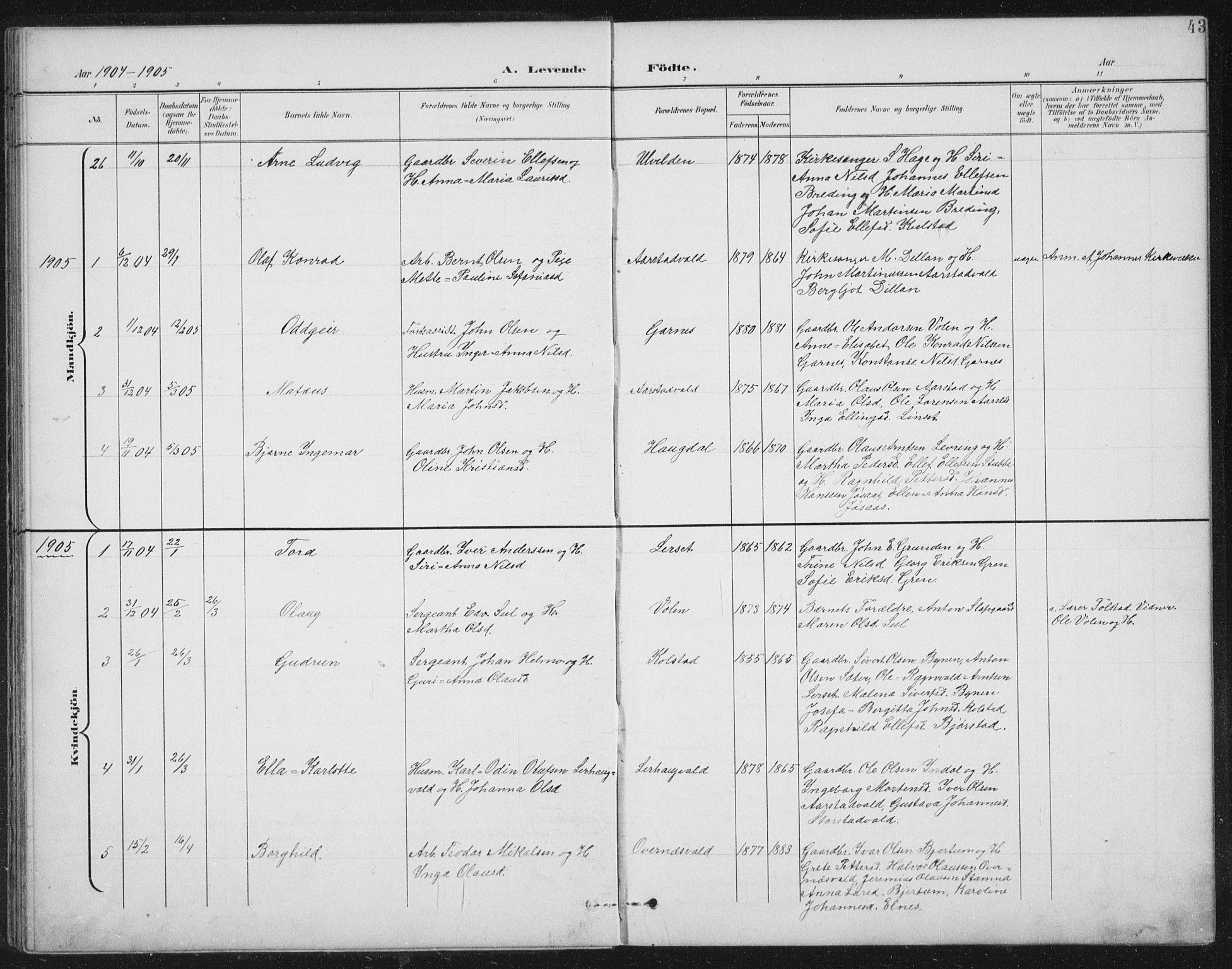 SAT, Ministerialprotokoller, klokkerbøker og fødselsregistre - Nord-Trøndelag, 724/L0269: Klokkerbok nr. 724C05, 1899-1920, s. 43