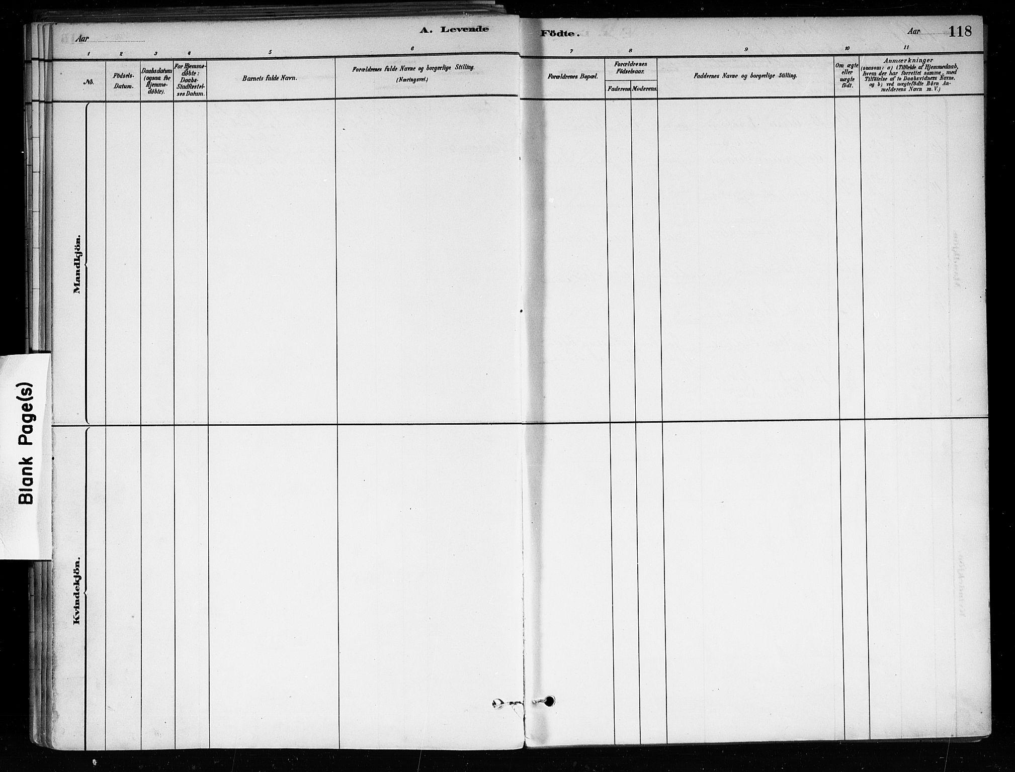SAKO, Røyken kirkebøker, F/Fa/L0008: Ministerialbok nr. 8, 1880-1897, s. 118