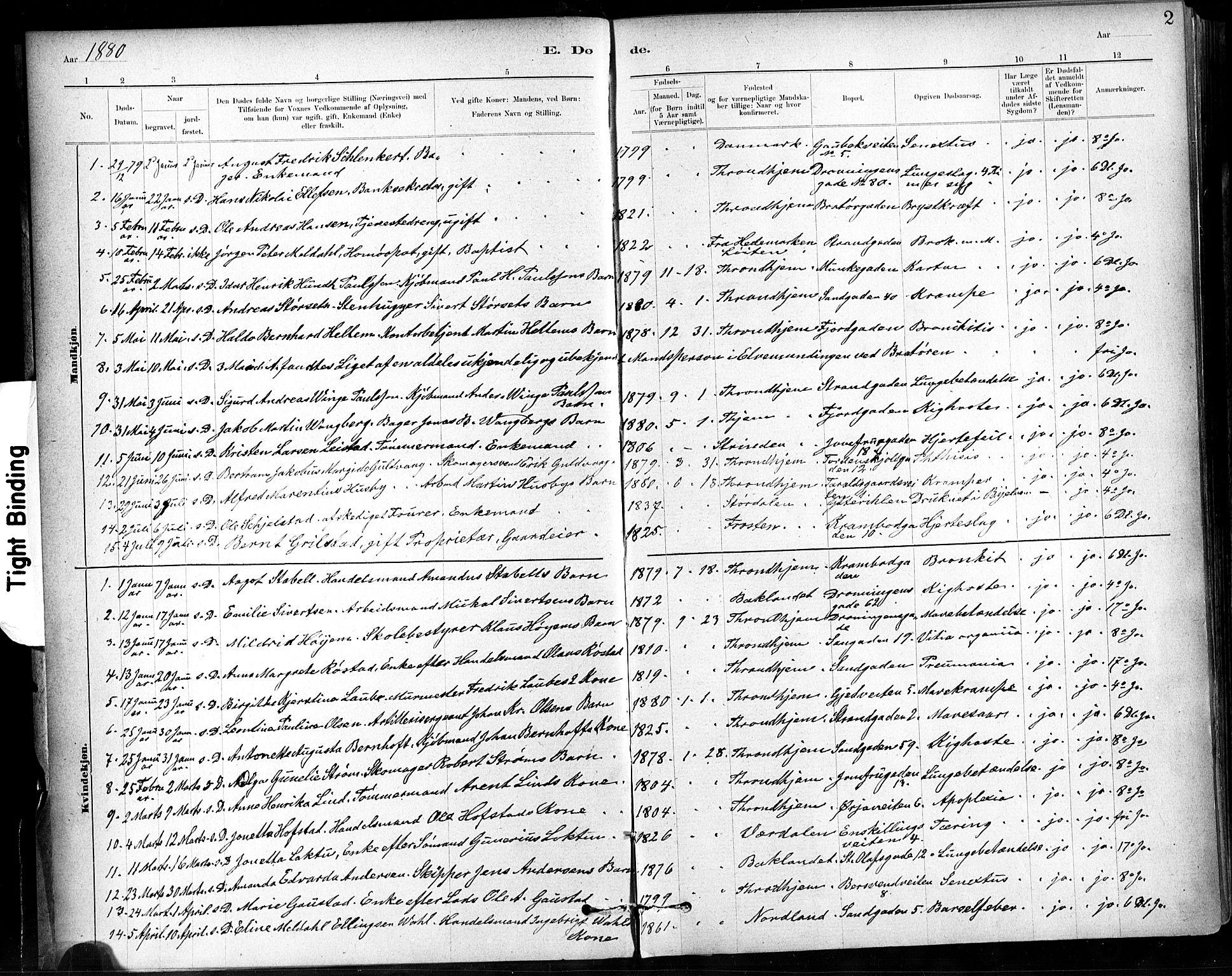 SAT, Ministerialprotokoller, klokkerbøker og fødselsregistre - Sør-Trøndelag, 602/L0120: Ministerialbok nr. 602A18, 1880-1913, s. 2