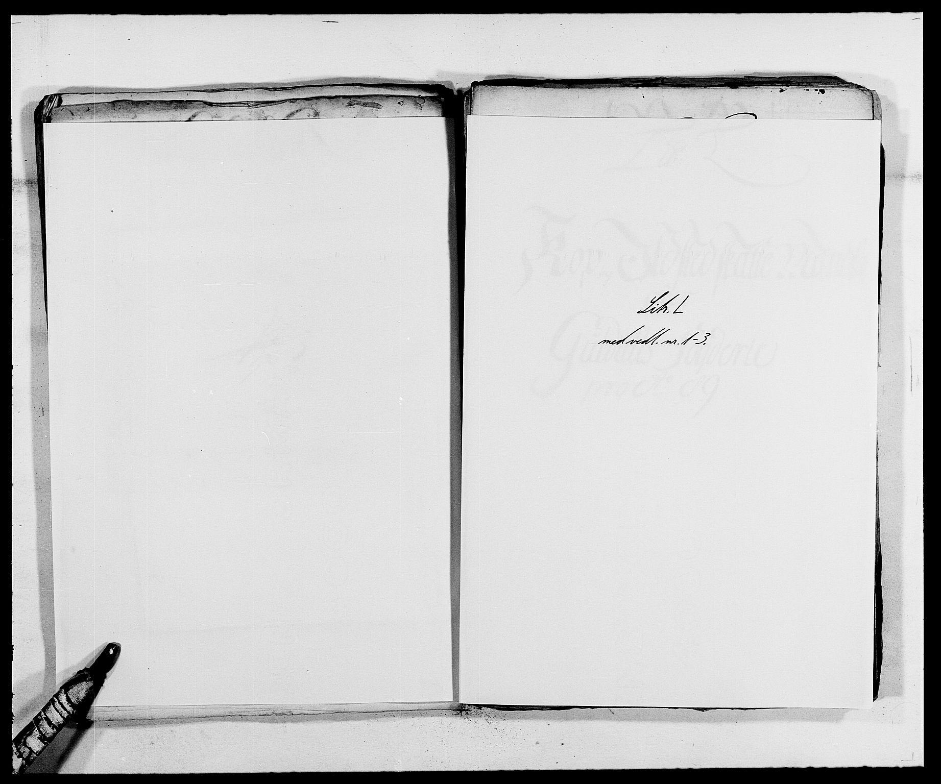 RA, Rentekammeret inntil 1814, Reviderte regnskaper, Fogderegnskap, R59/L3940: Fogderegnskap Gauldal, 1689-1690, s. 109