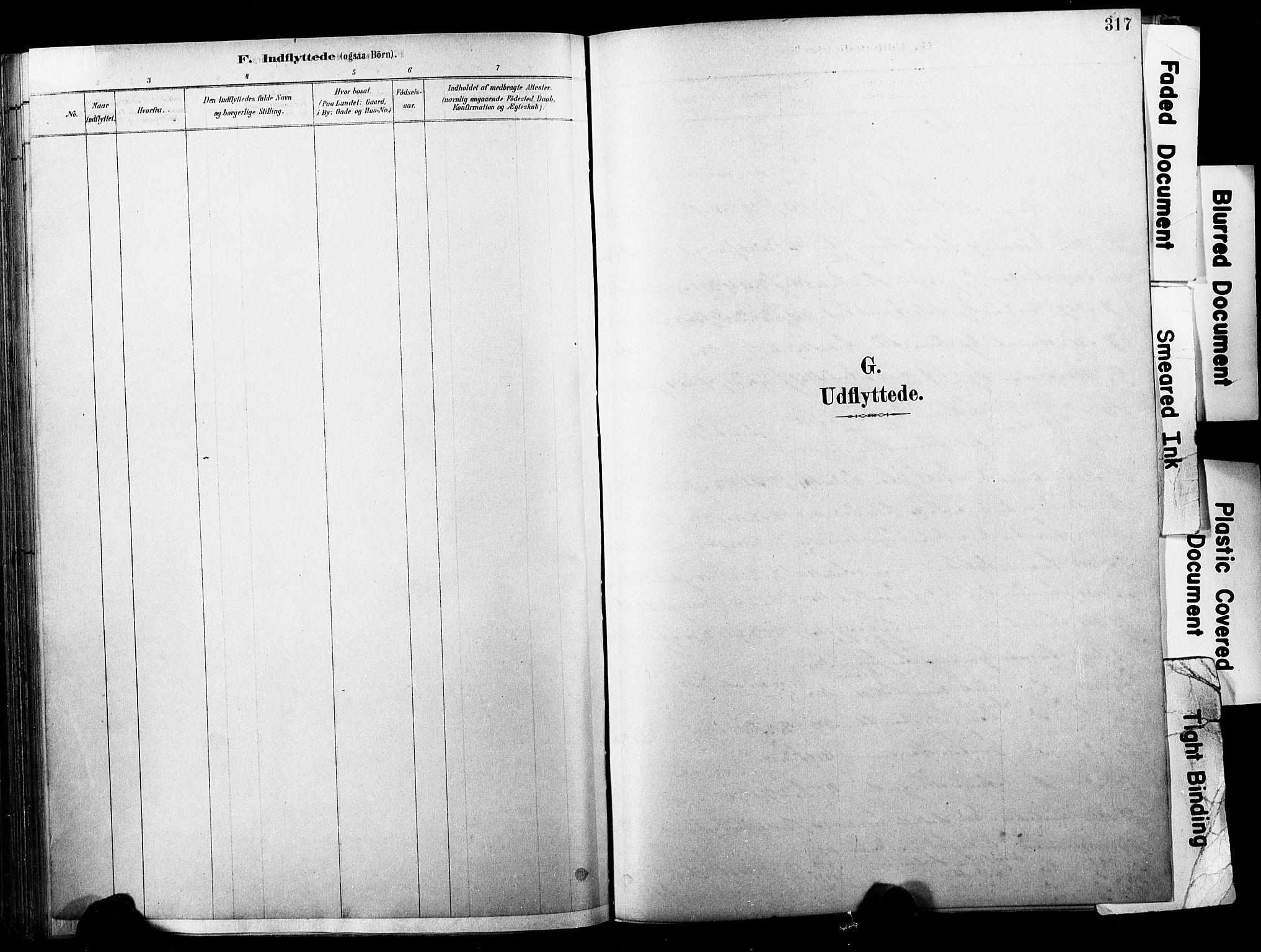 SAKO, Horten kirkebøker, F/Fa/L0004: Ministerialbok nr. 4, 1888-1895, s. 317