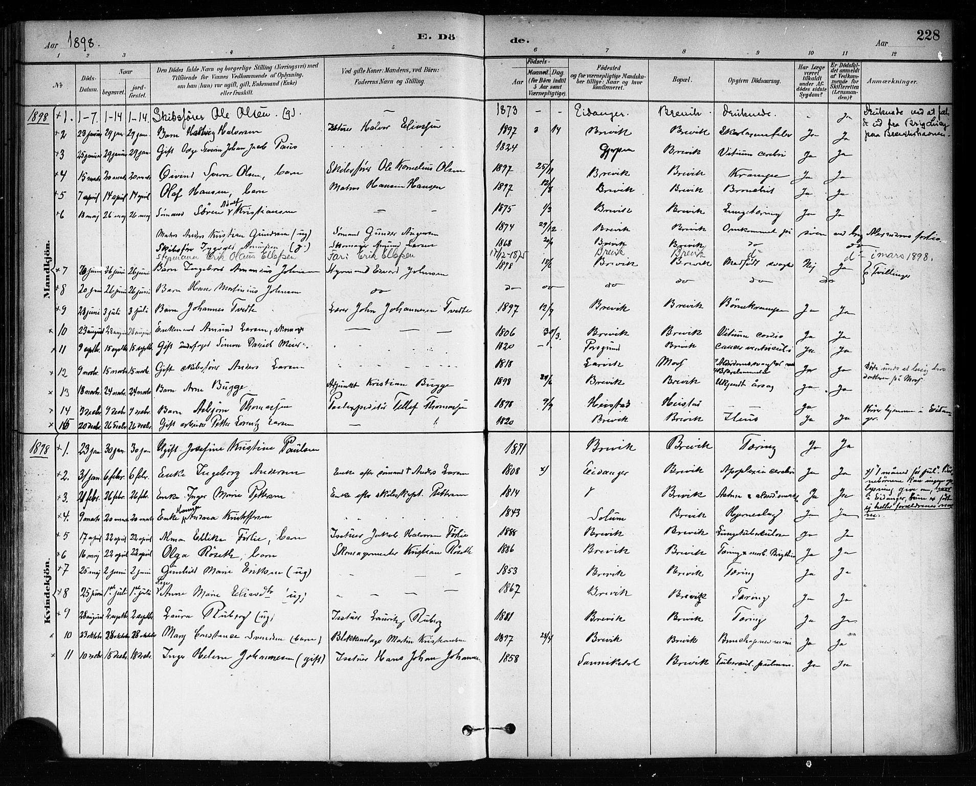 SAKO, Brevik kirkebøker, F/Fa/L0007: Ministerialbok nr. 7, 1882-1900, s. 228