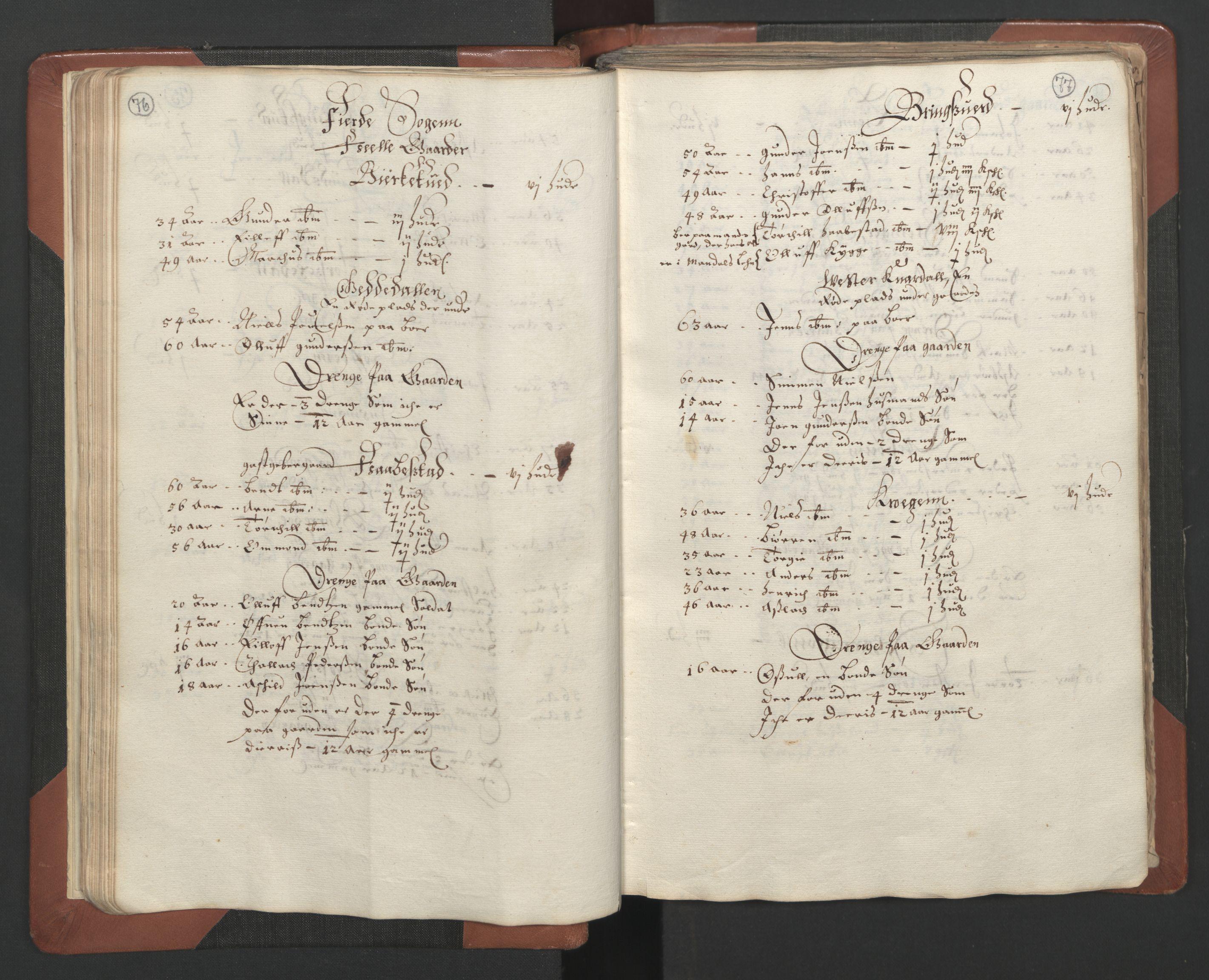 RA, Fogdenes og sorenskrivernes manntall 1664-1666, nr. 7: Nedenes fogderi, 1664-1666, s. 76-77
