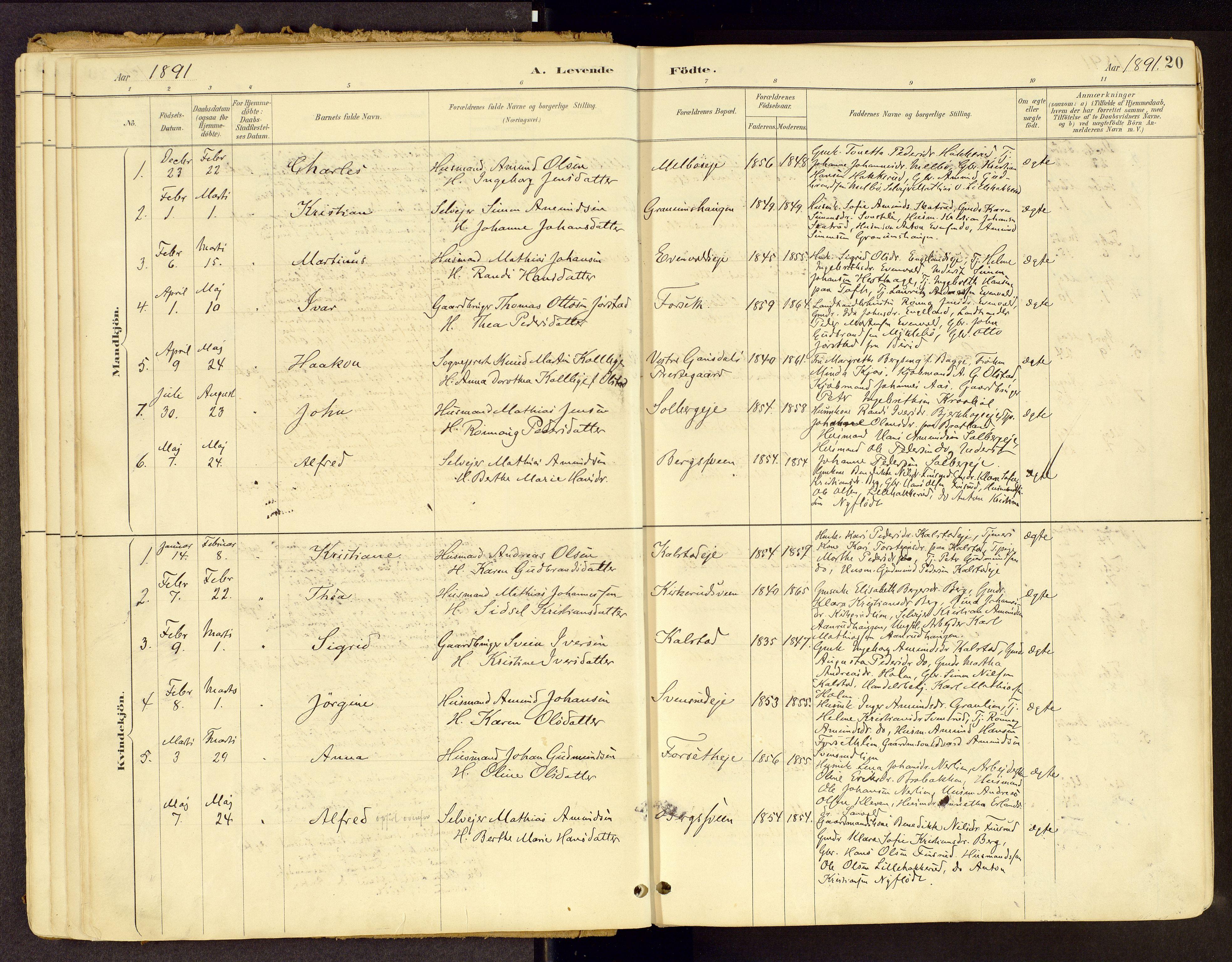 SAH, Vestre Gausdal prestekontor, Ministerialbok nr. 1, 1887-1914, s. 20