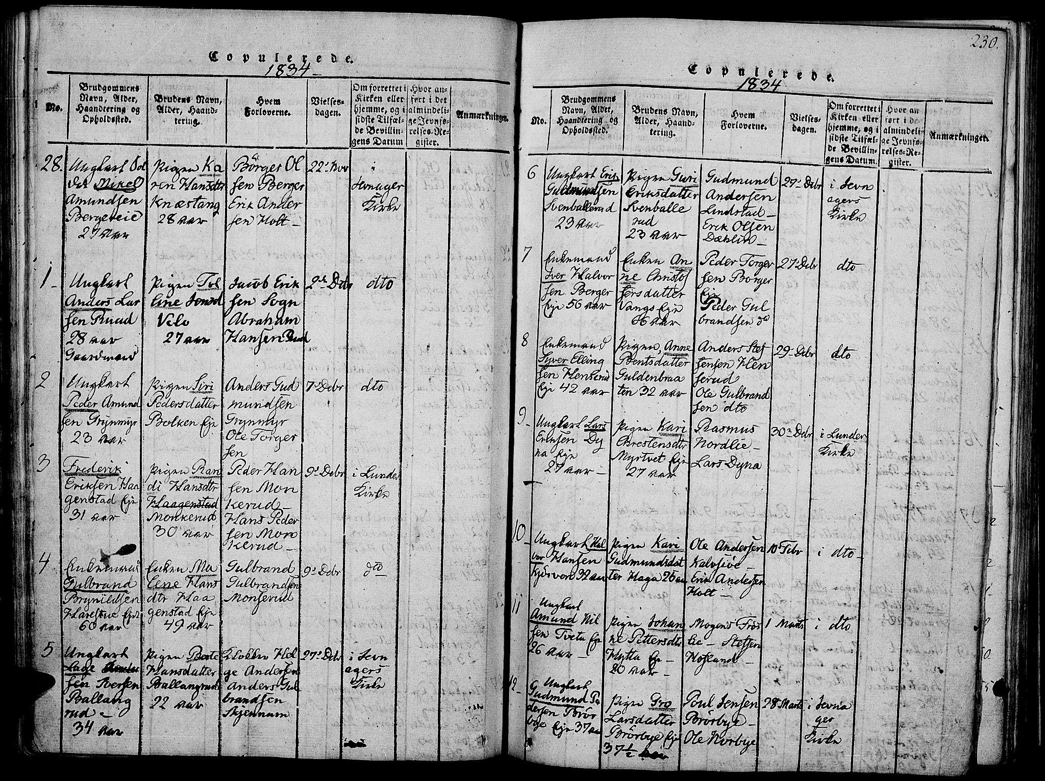 SAH, Jevnaker prestekontor, Ministerialbok nr. 5, 1815-1837, s. 230