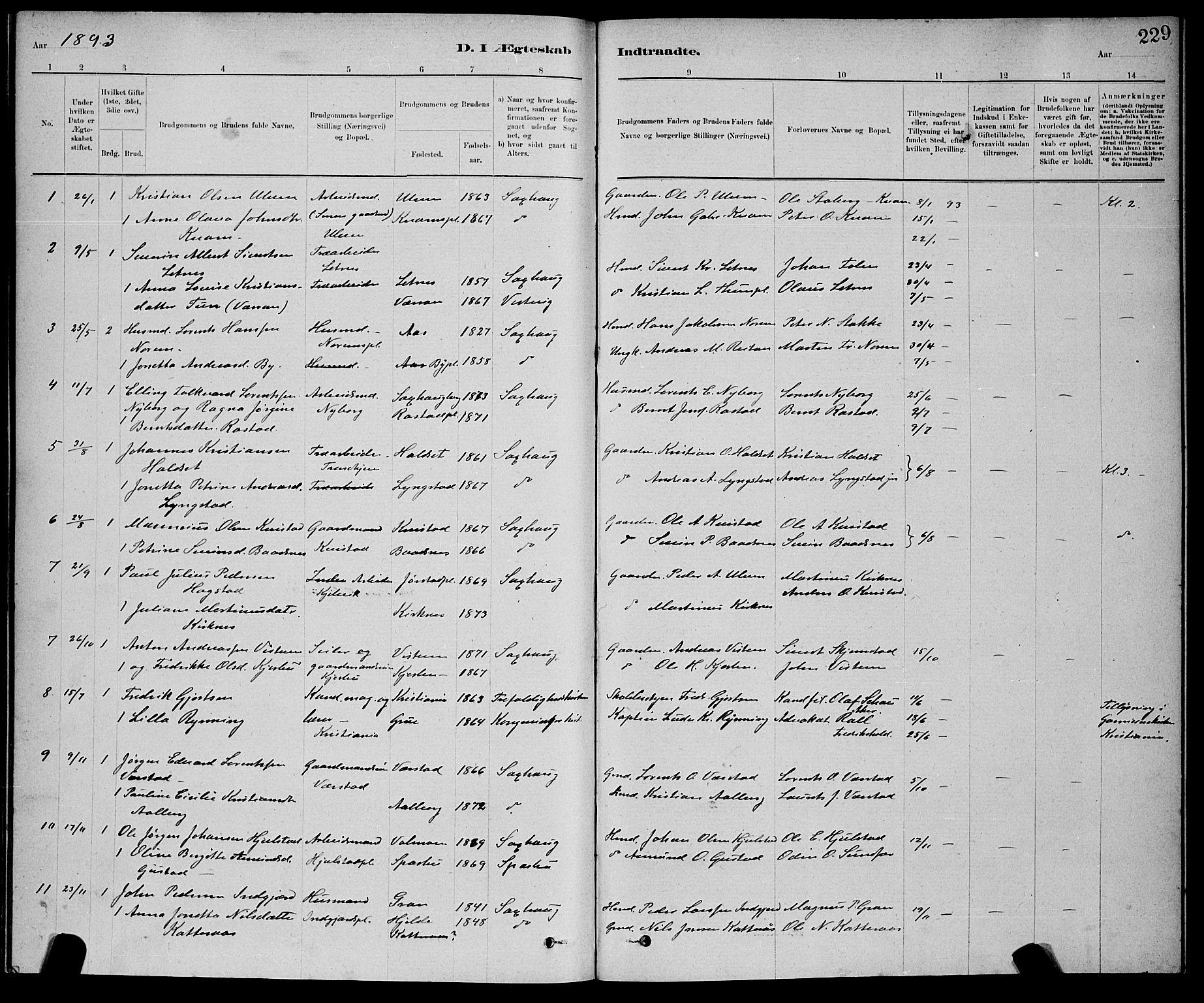 SAT, Ministerialprotokoller, klokkerbøker og fødselsregistre - Nord-Trøndelag, 730/L0301: Klokkerbok nr. 730C04, 1880-1897, s. 229