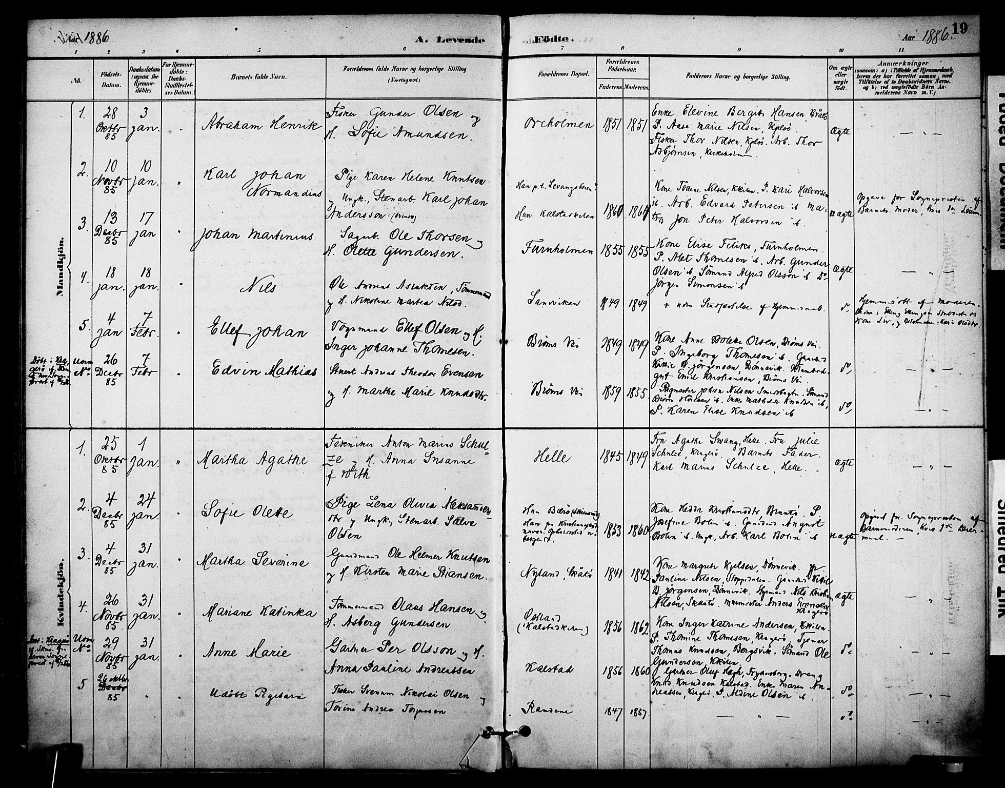 SAKO, Skåtøy kirkebøker, F/Fa/L0002: Ministerialbok nr. I 2, 1884-1899, s. 19