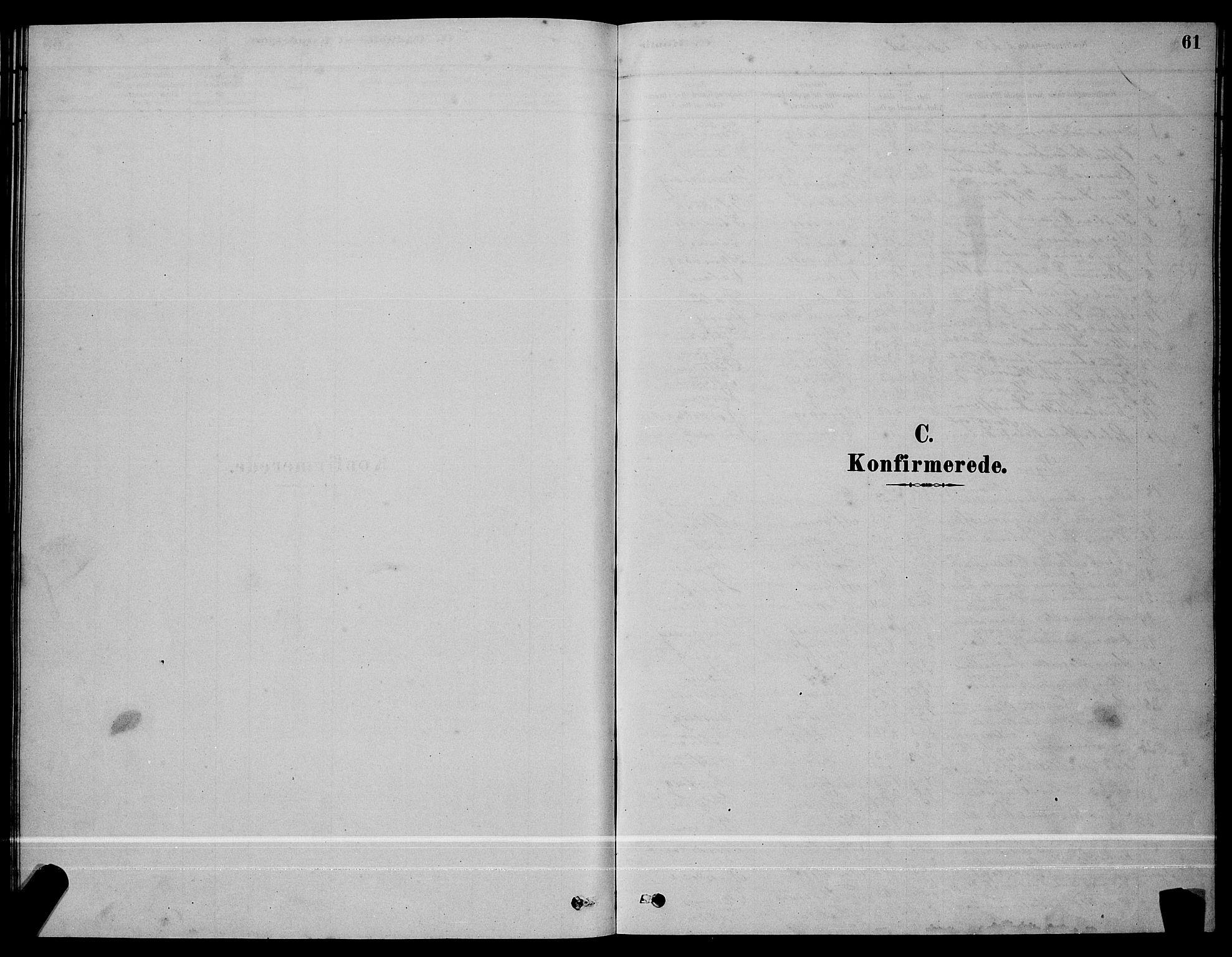 SAT, Ministerialprotokoller, klokkerbøker og fødselsregistre - Sør-Trøndelag, 641/L0597: Klokkerbok nr. 641C01, 1878-1893, s. 61