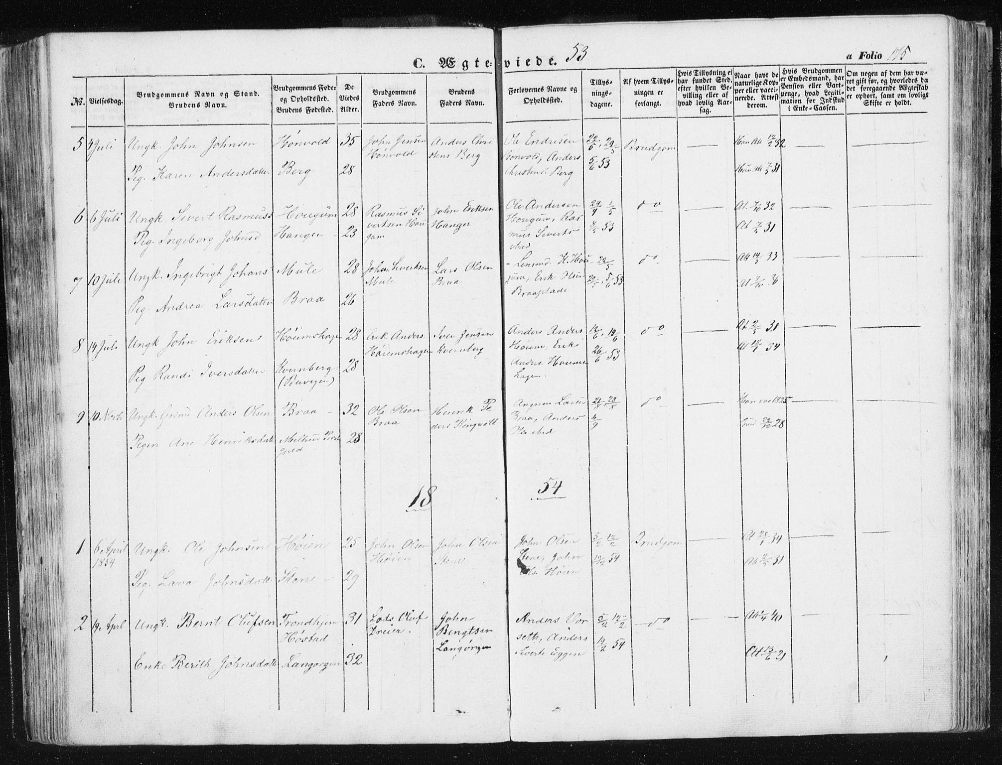 SAT, Ministerialprotokoller, klokkerbøker og fødselsregistre - Sør-Trøndelag, 612/L0376: Ministerialbok nr. 612A08, 1846-1859, s. 175