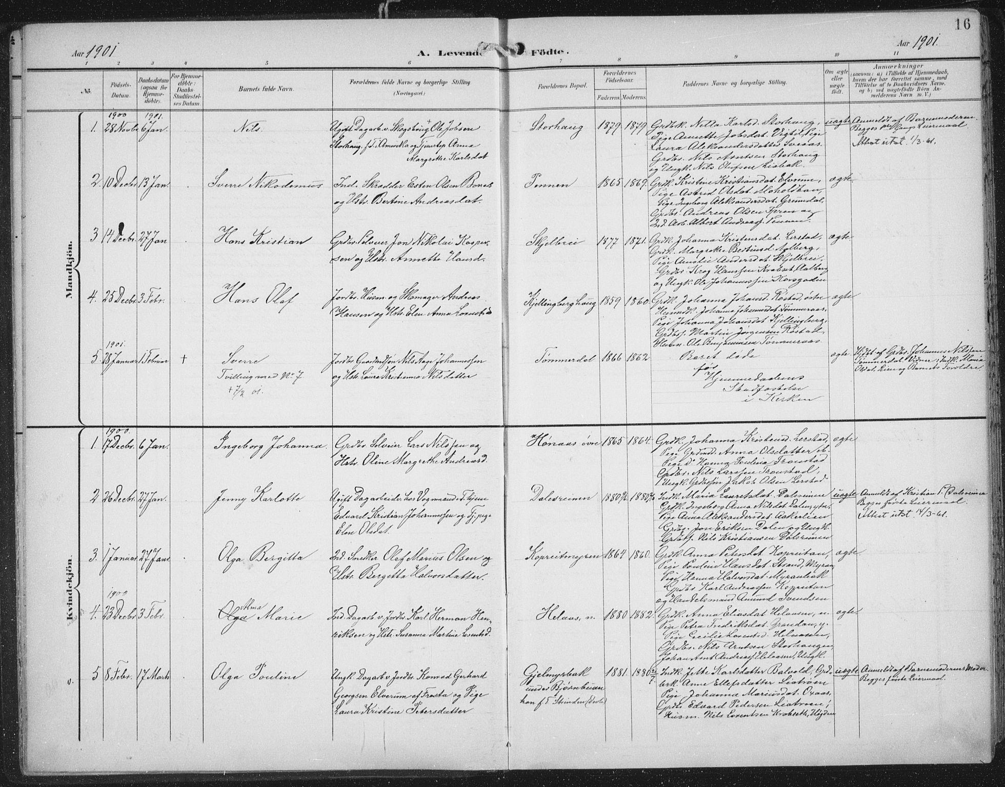 SAT, Ministerialprotokoller, klokkerbøker og fødselsregistre - Nord-Trøndelag, 701/L0011: Ministerialbok nr. 701A11, 1899-1915, s. 16